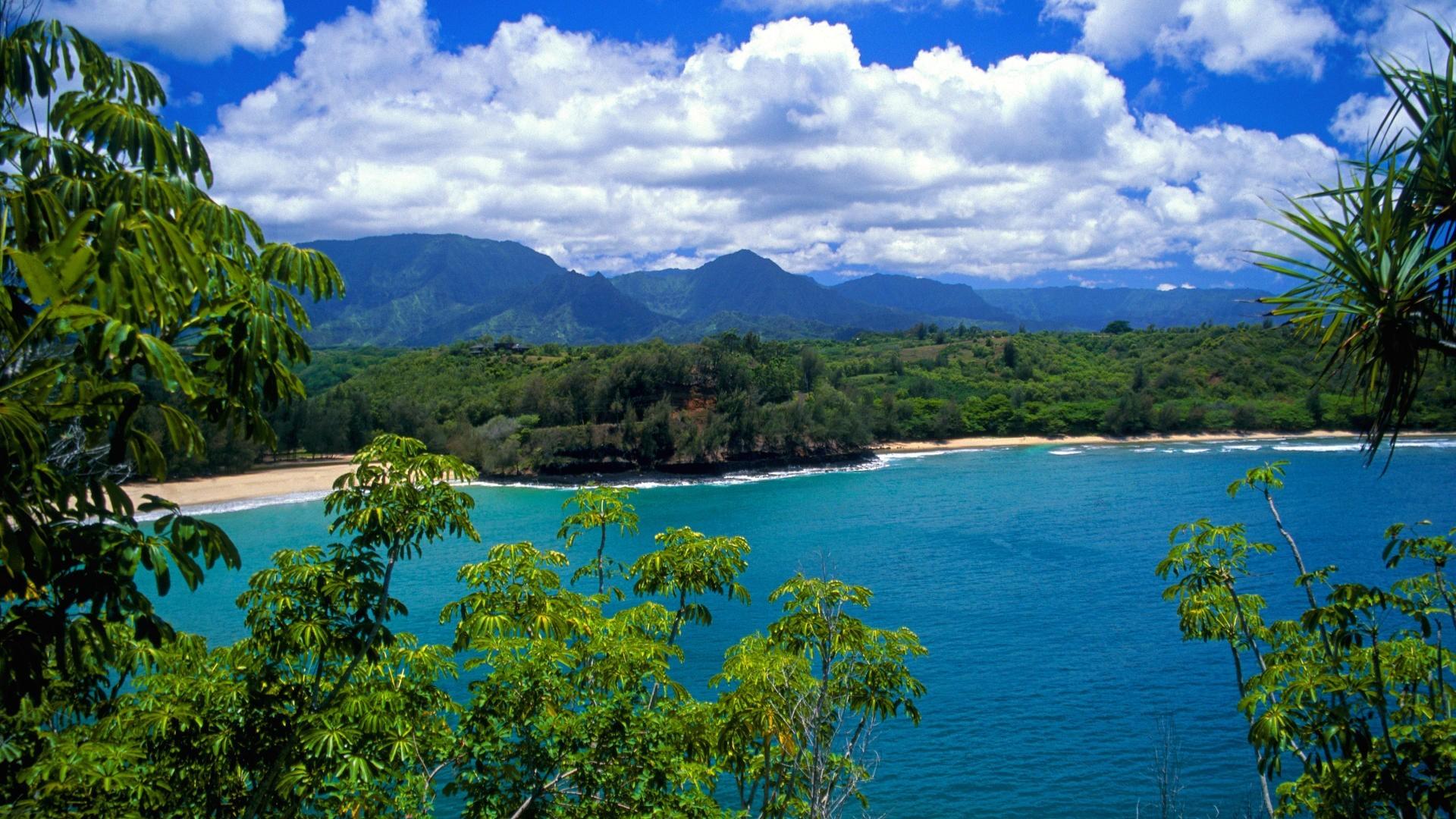 Free Beach Hawaii High Definition Nature Wallp #4886 Wallpaper   Cool .
