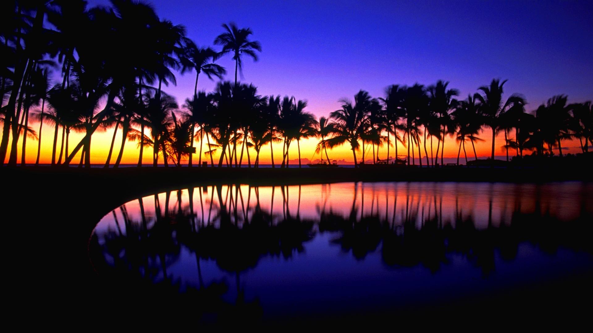 Hawaii Tropical Wallpaper Hawaii, Tropical, Reflections