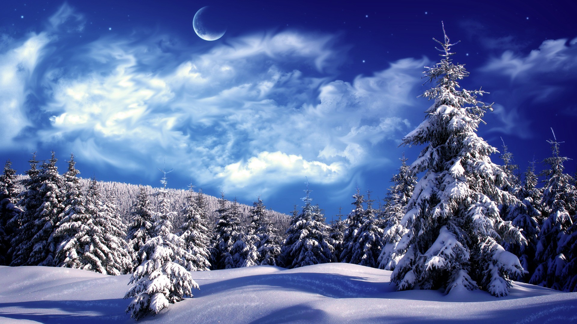 Winter Wallpaper and Pictures: Forest in winter Wallpaper HD Winter  Pictures Wallpapers Wallpapers)