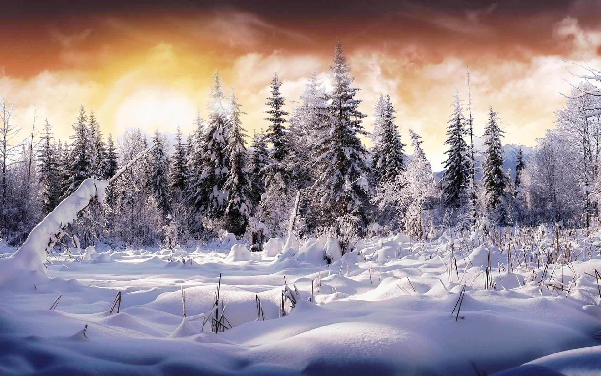 HD Wallpaper | Background ID:49262. Earth Winter