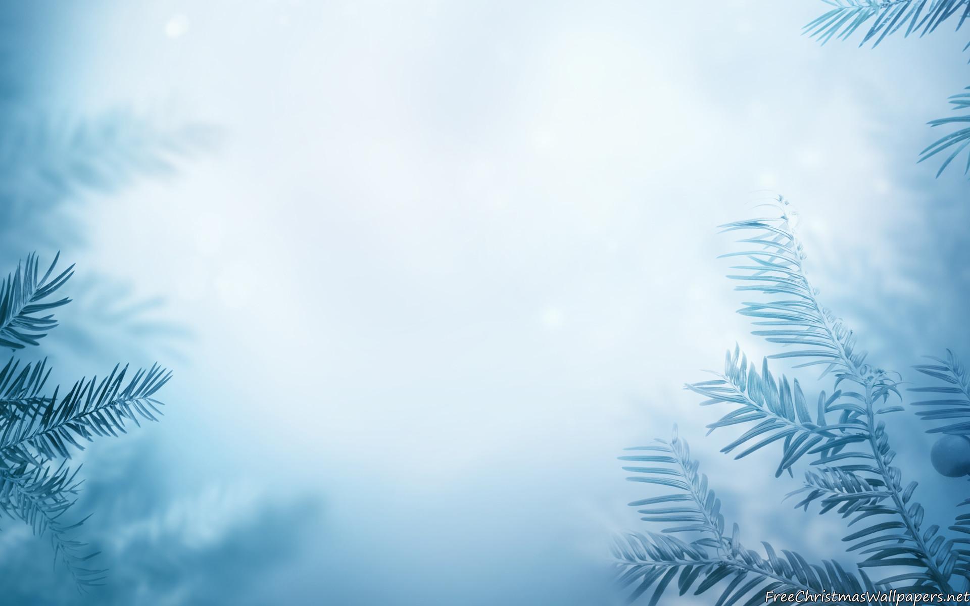 Winter Background wallpaper #81016