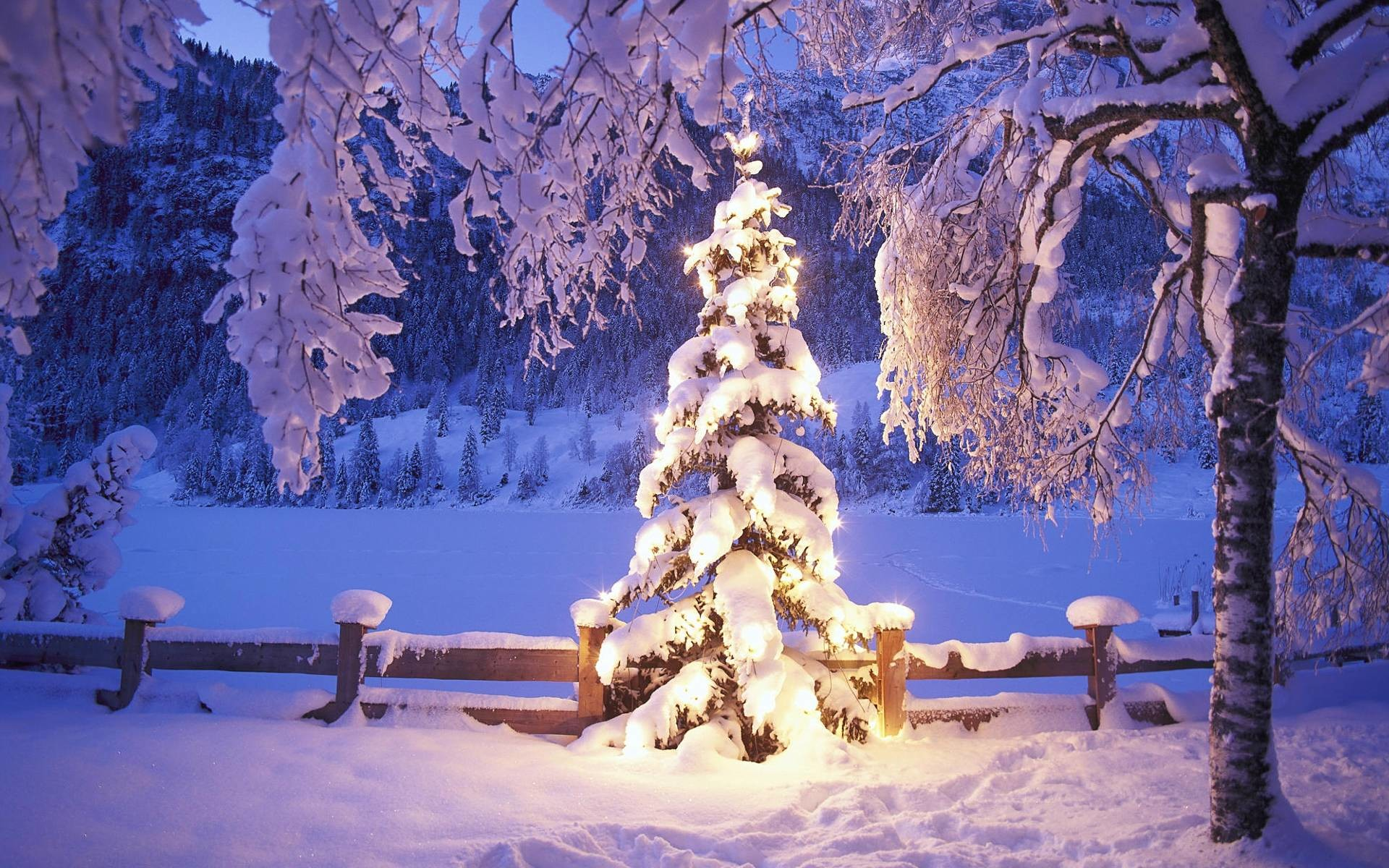 Wallpapers For > Christmas Winter Backgrounds For Desktop