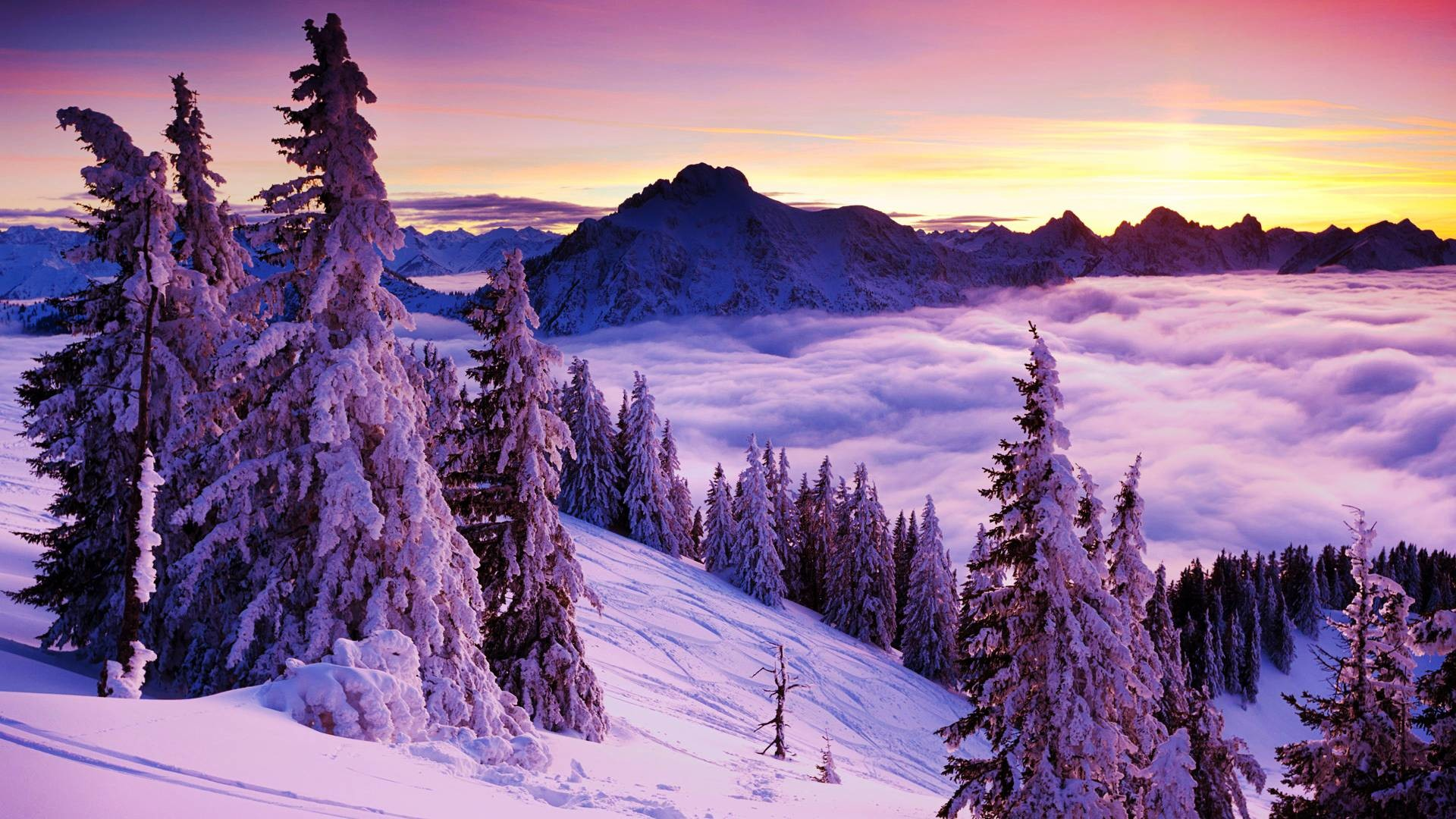 Beautiful Winter Landscape Hd Images 3 HD Wallpapers | Natureimgz.