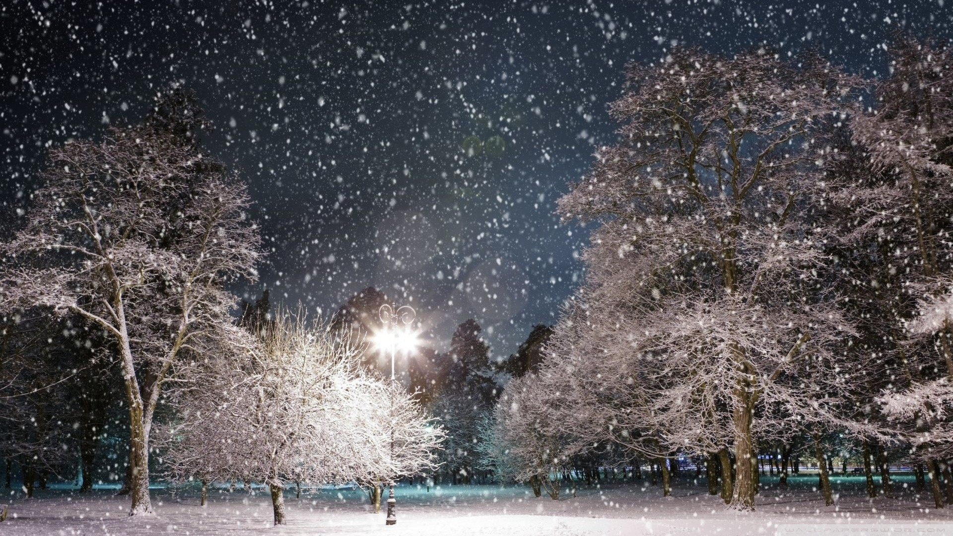 Snow At Night Wallpaper Snow, At, Night