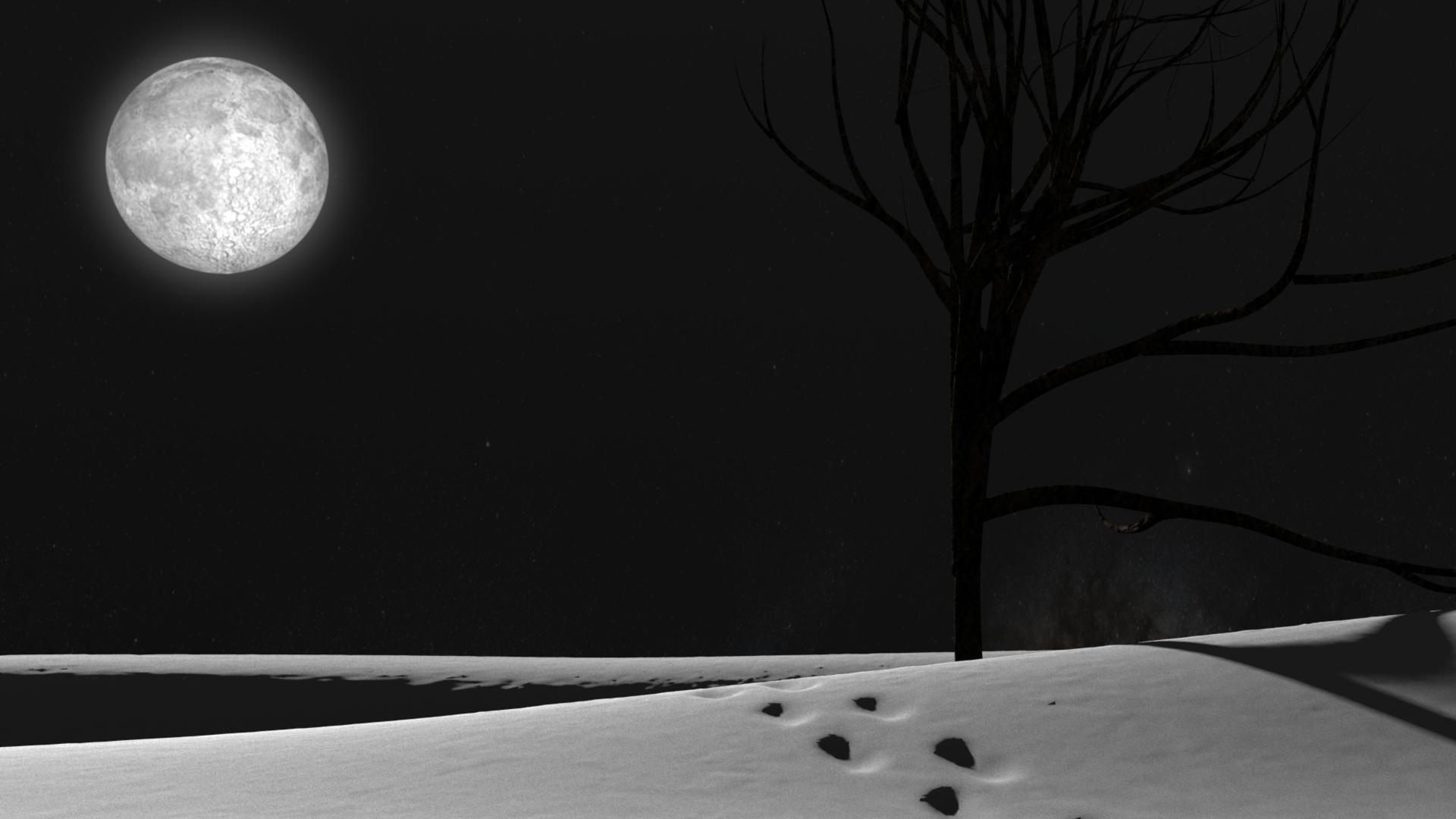 Snowy Night 526668