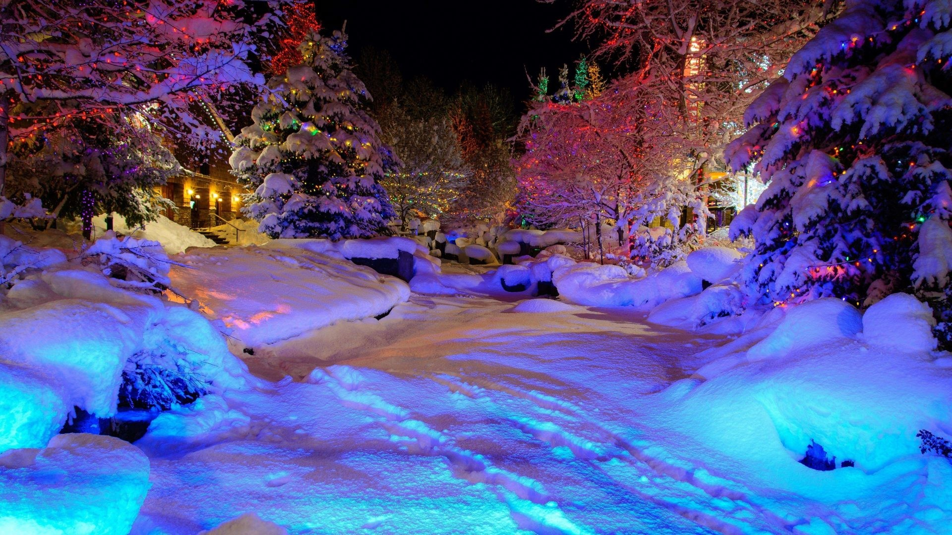 Nights Tag – Christmas Colorful Winter Snow Nature Nights Magic Lights Full  HD Pictures for HD