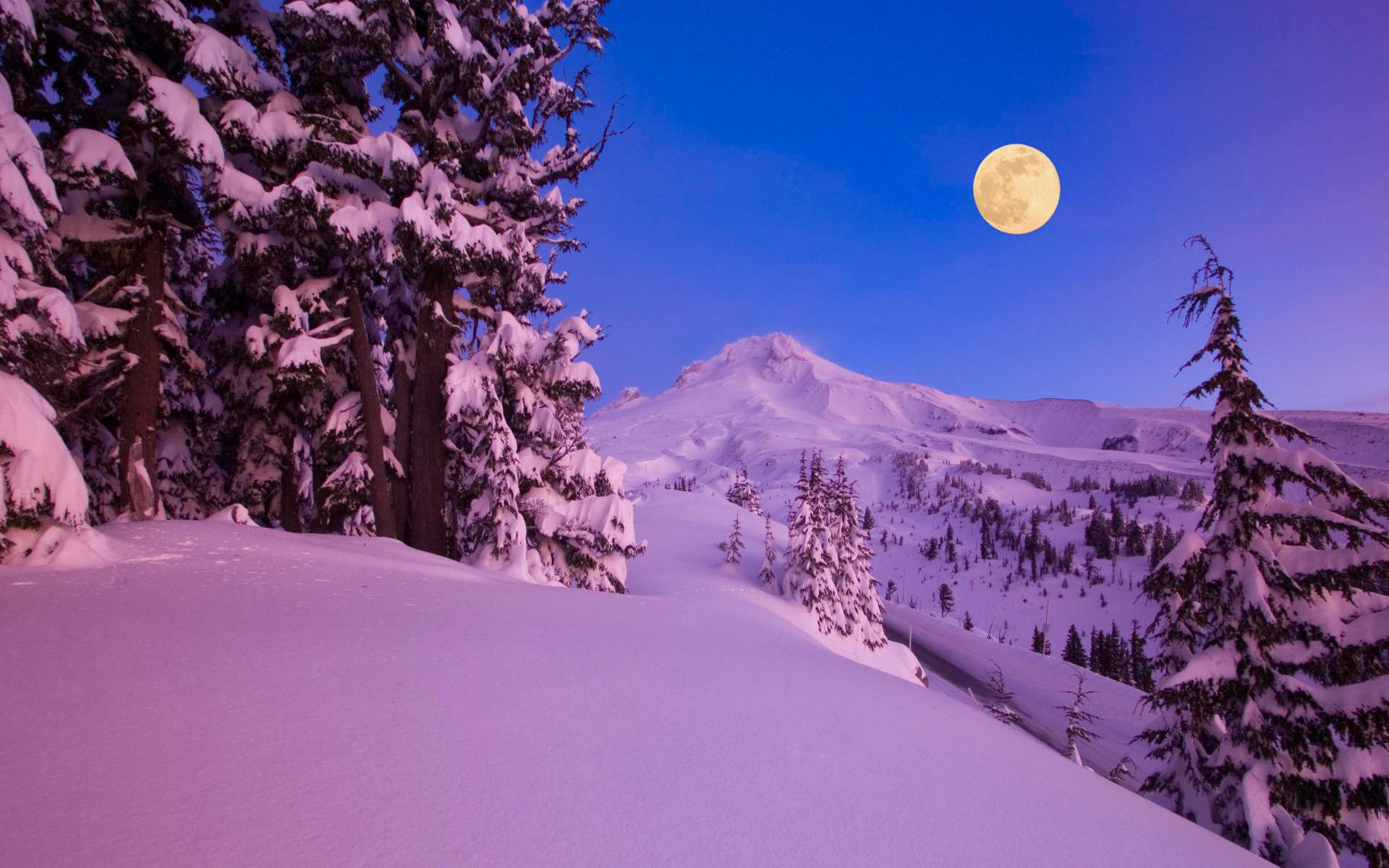 Wallpaper winter, snow, night, moon, mountains, tree desktop wallpaper .