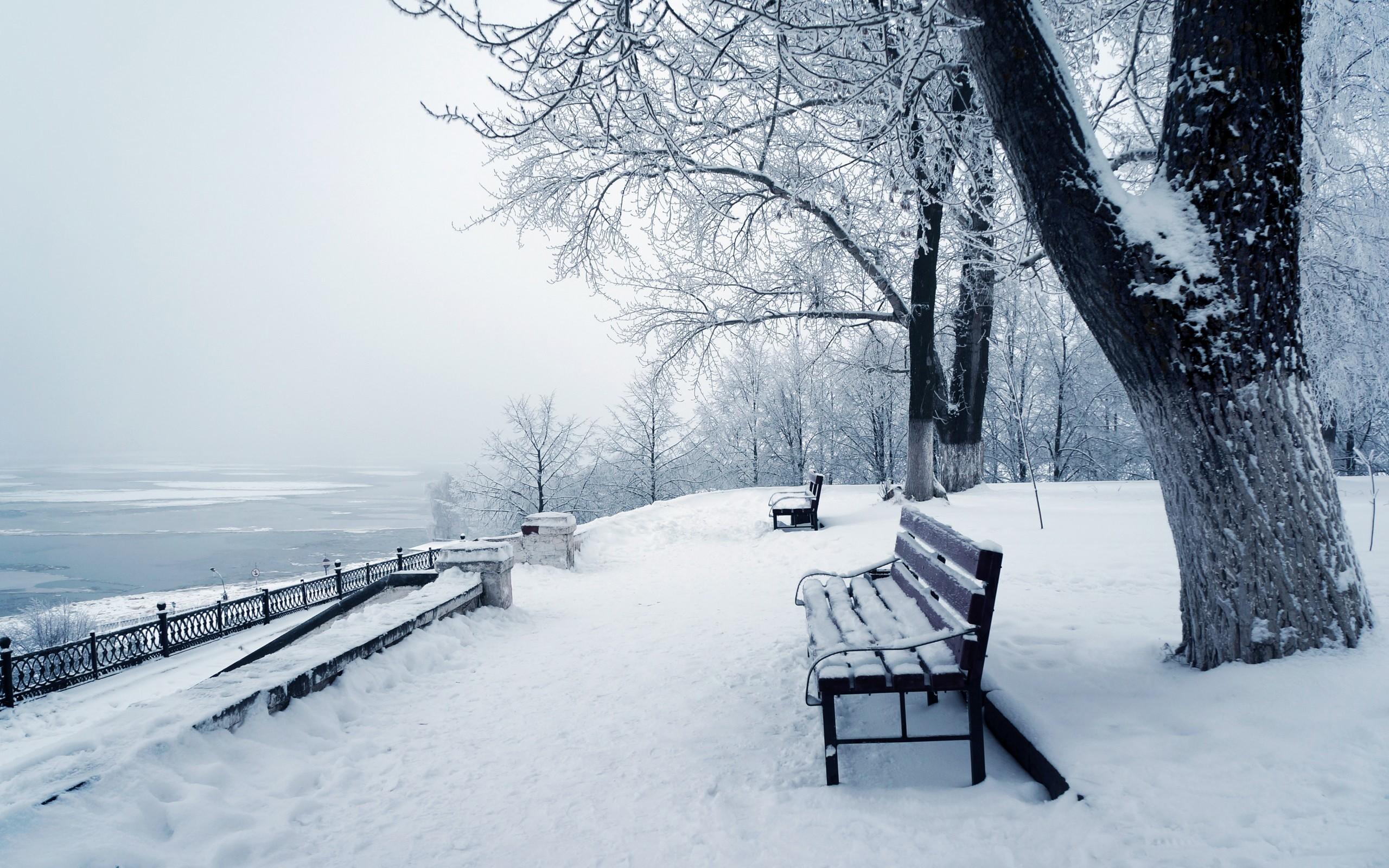 Wallpaper Winter