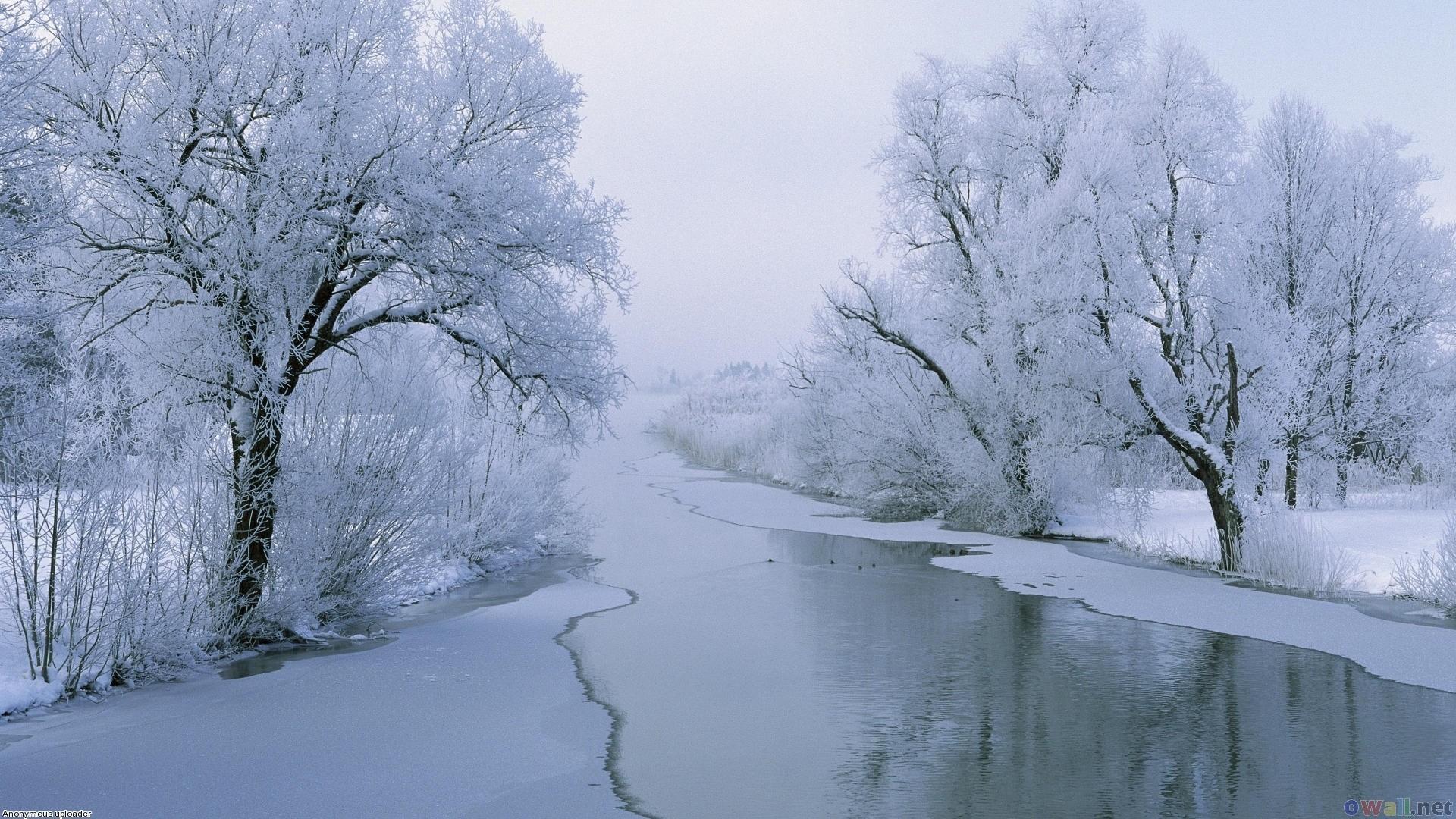 Winter Widescreen Wallpaper