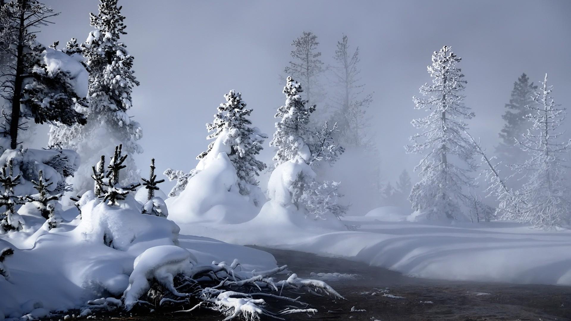 Mystic Winter Wallpaper Winter Nature Wallpapers