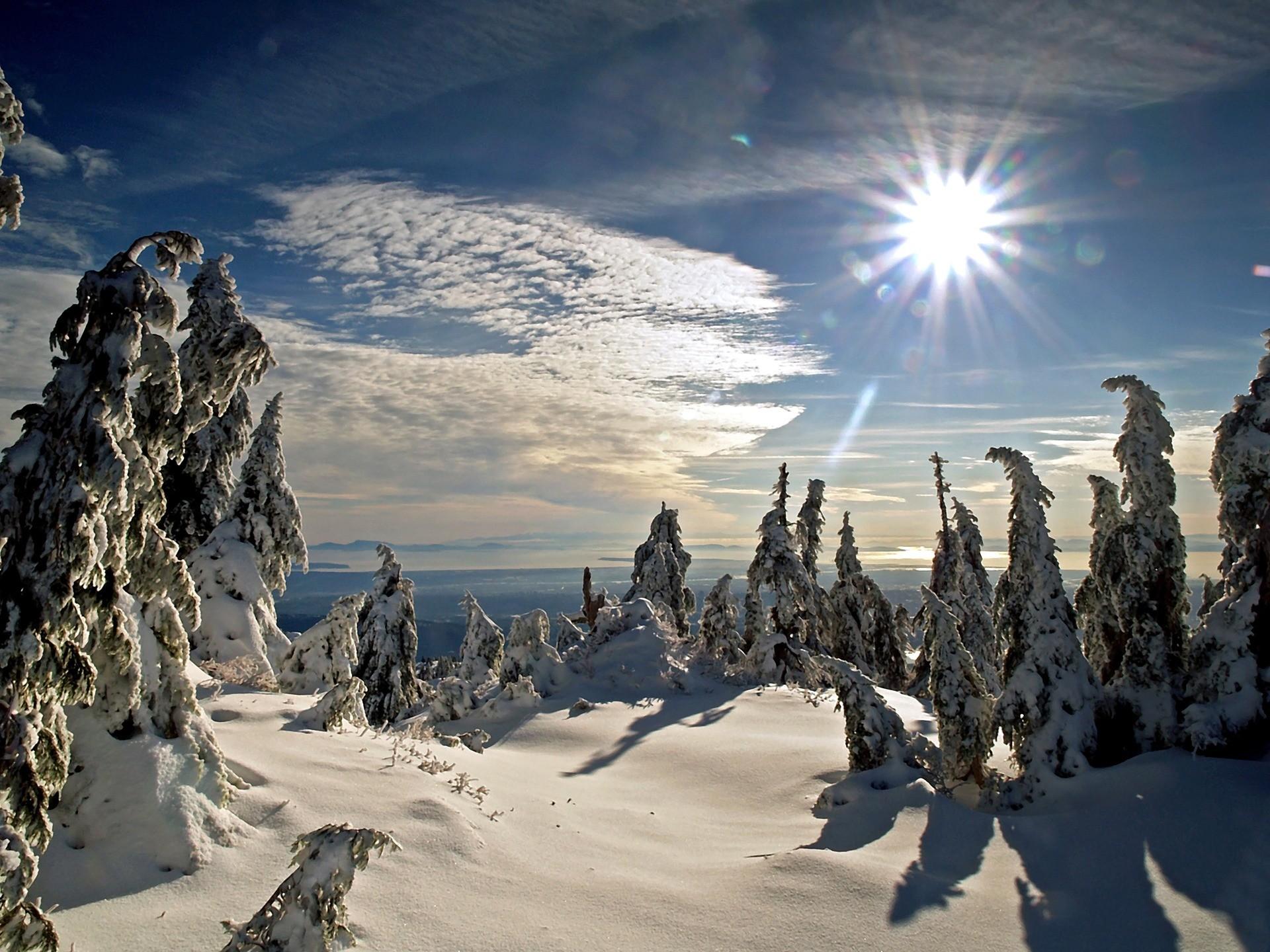 Winter Sun Wallpaper Winter Nature