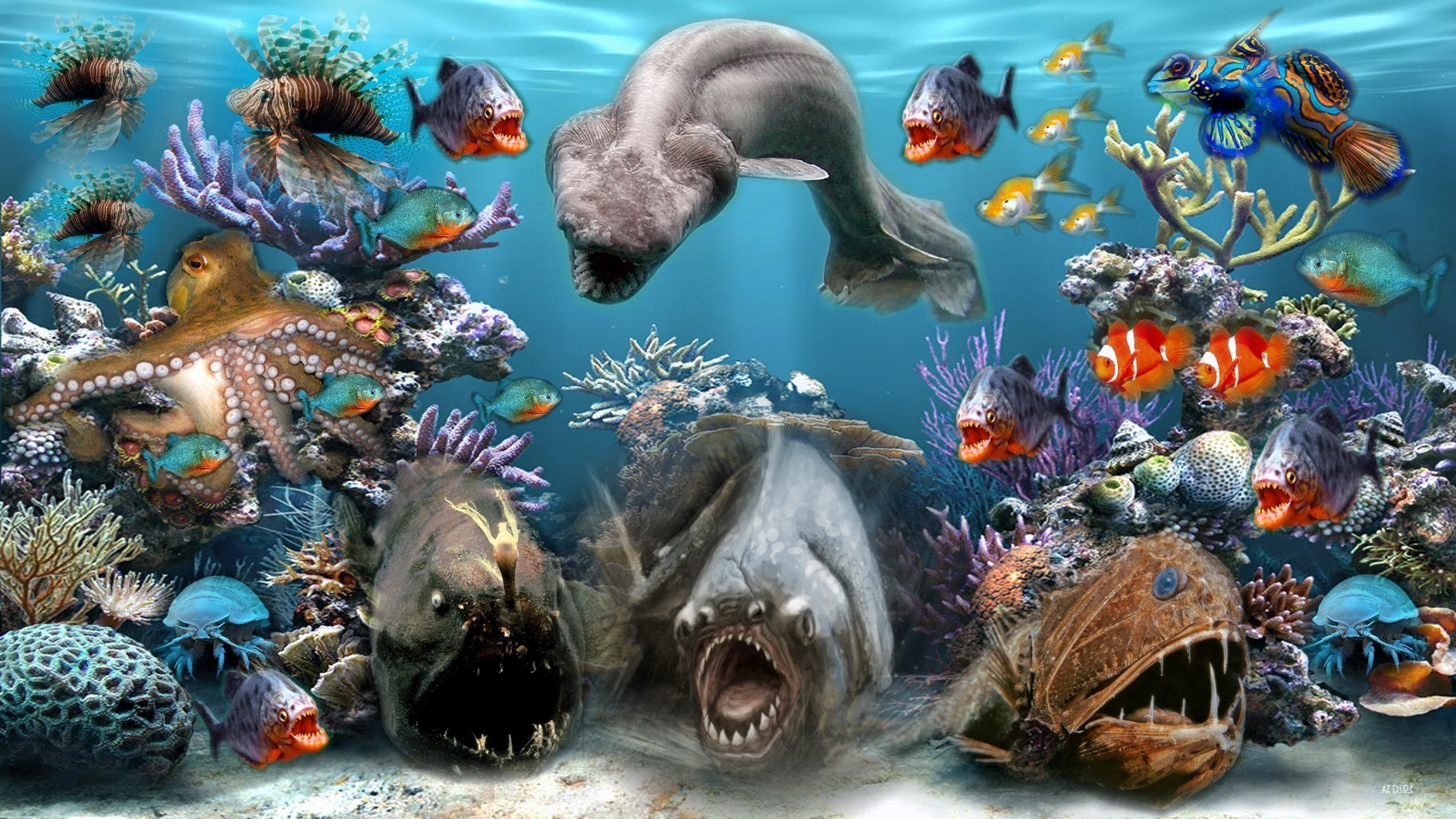 You can download Sea Creature Hd Wallpapers here. Sea Creature Hd Wallpapers  In High Resolution