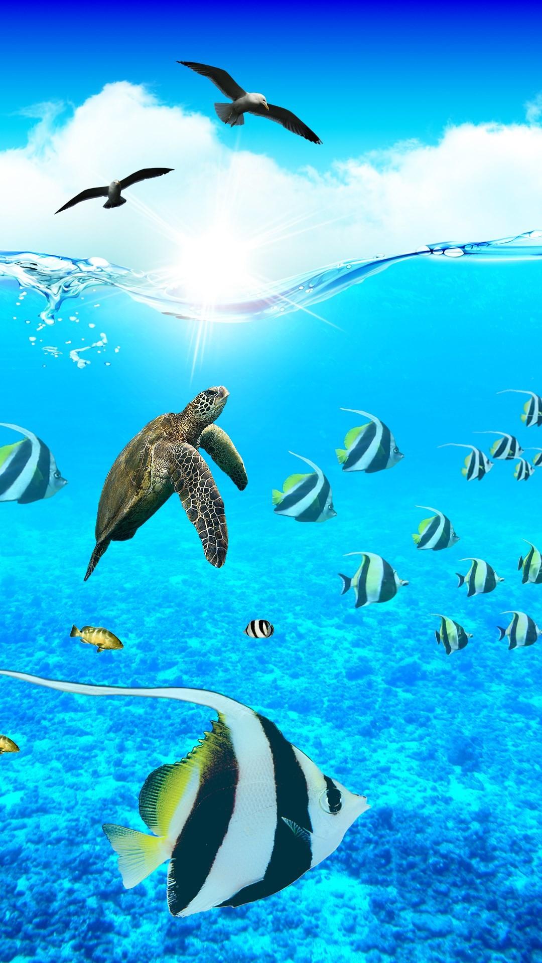 Ocean Aquarium. Paradise iPhone Wallpapers – mobile9 #underwater #animals # sea