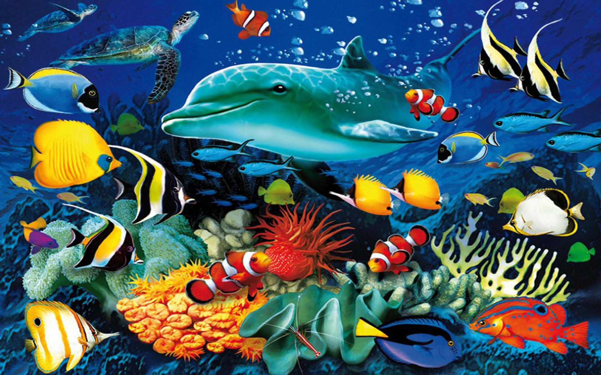 Ocean Underwater World Ma.
