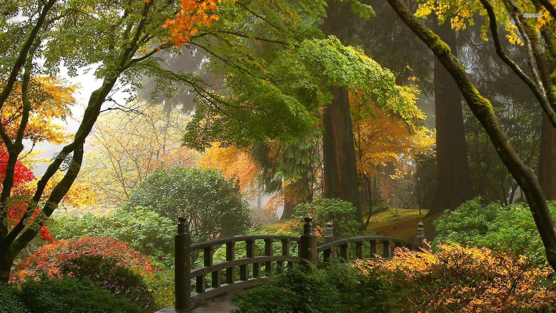 12484-japanese-garden-1920×1080-nature-wallpaper -AMB