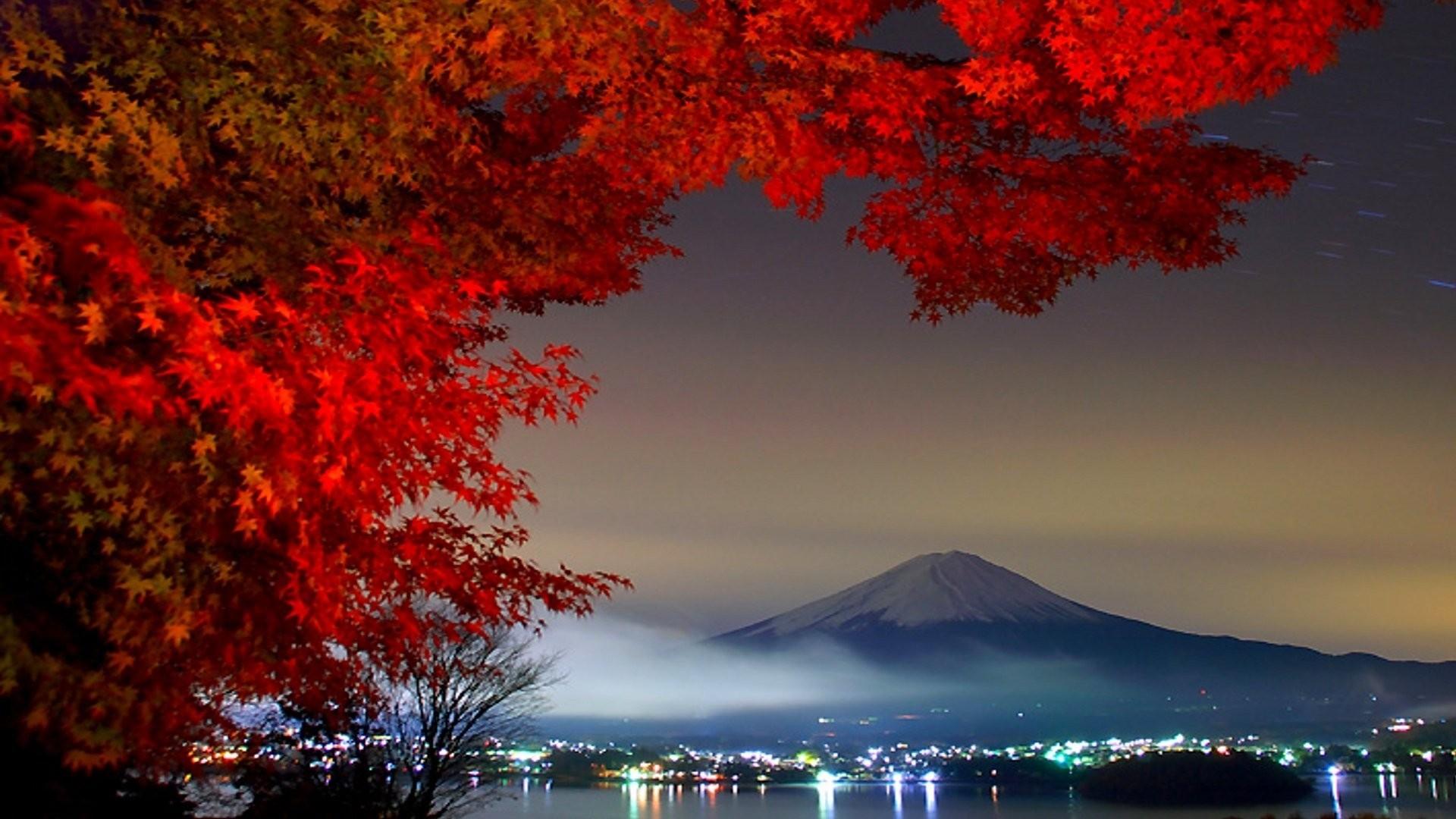 Autumn In City Nature Wallpaper