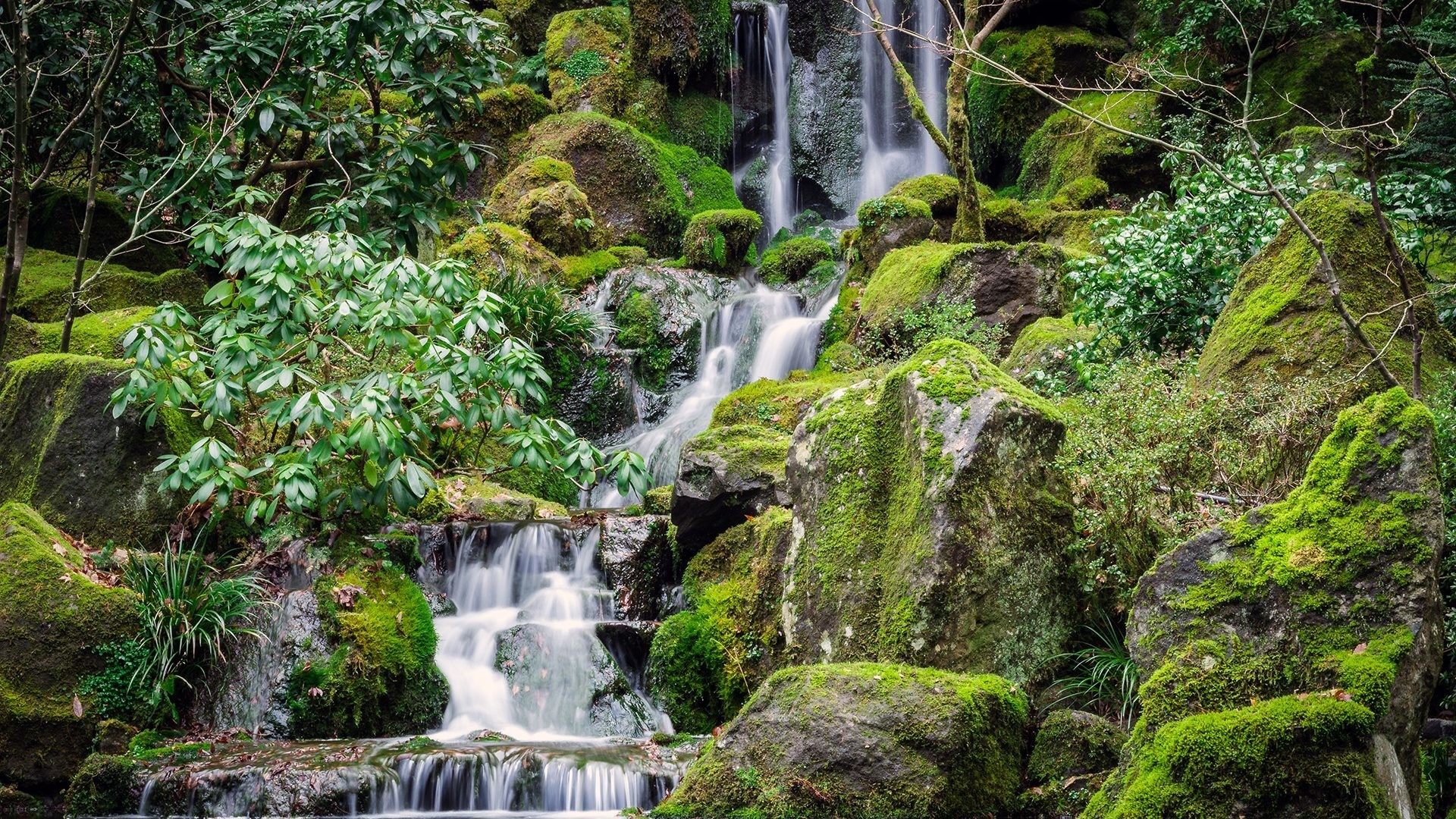 Japanese Tag – Gardens Waterfalls Japanese Nature Parks Hd Waterfall for HD  16:9 High
