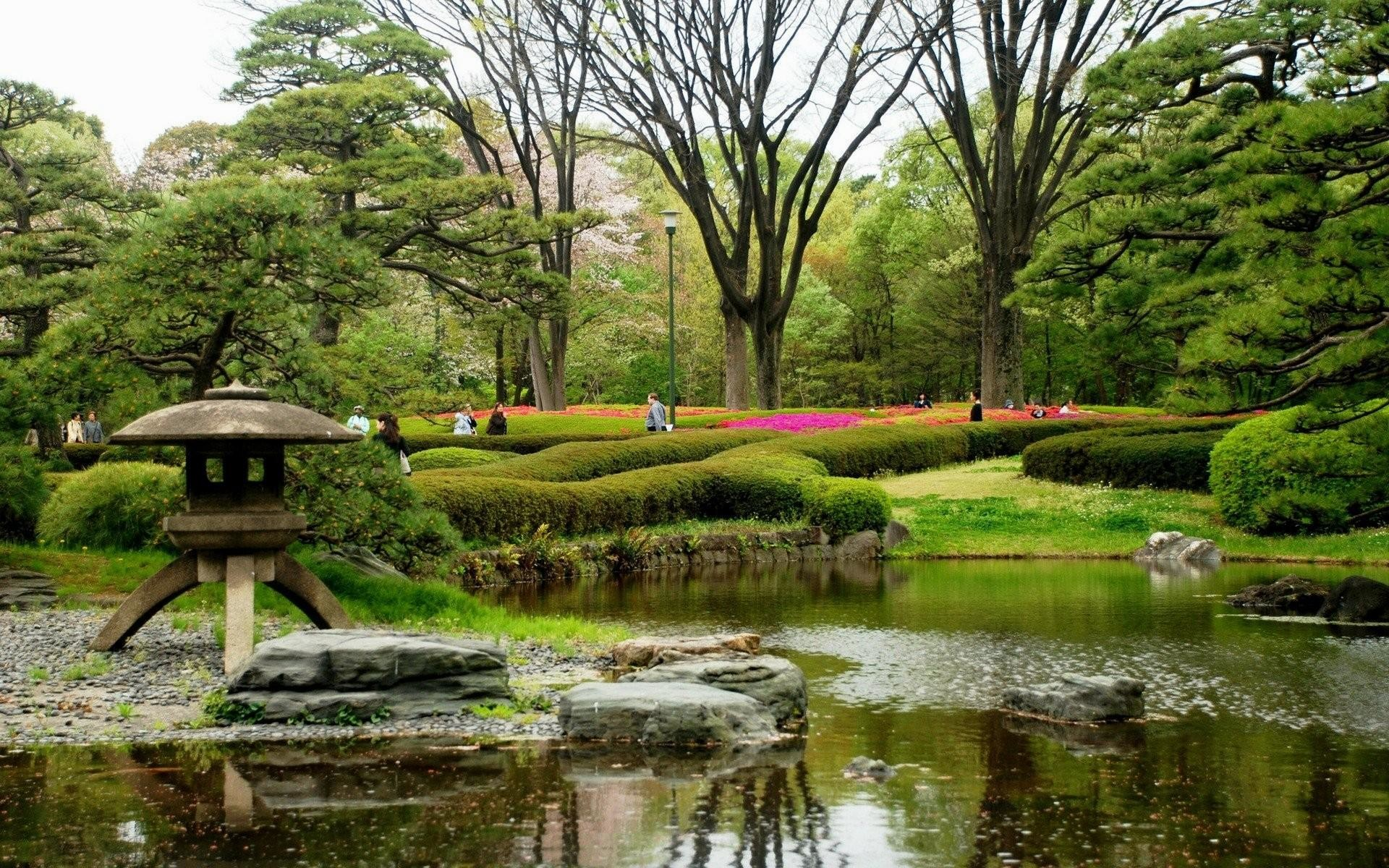 wallpaper.wiki-Nature-gardens-trees-in-japan-PIC-