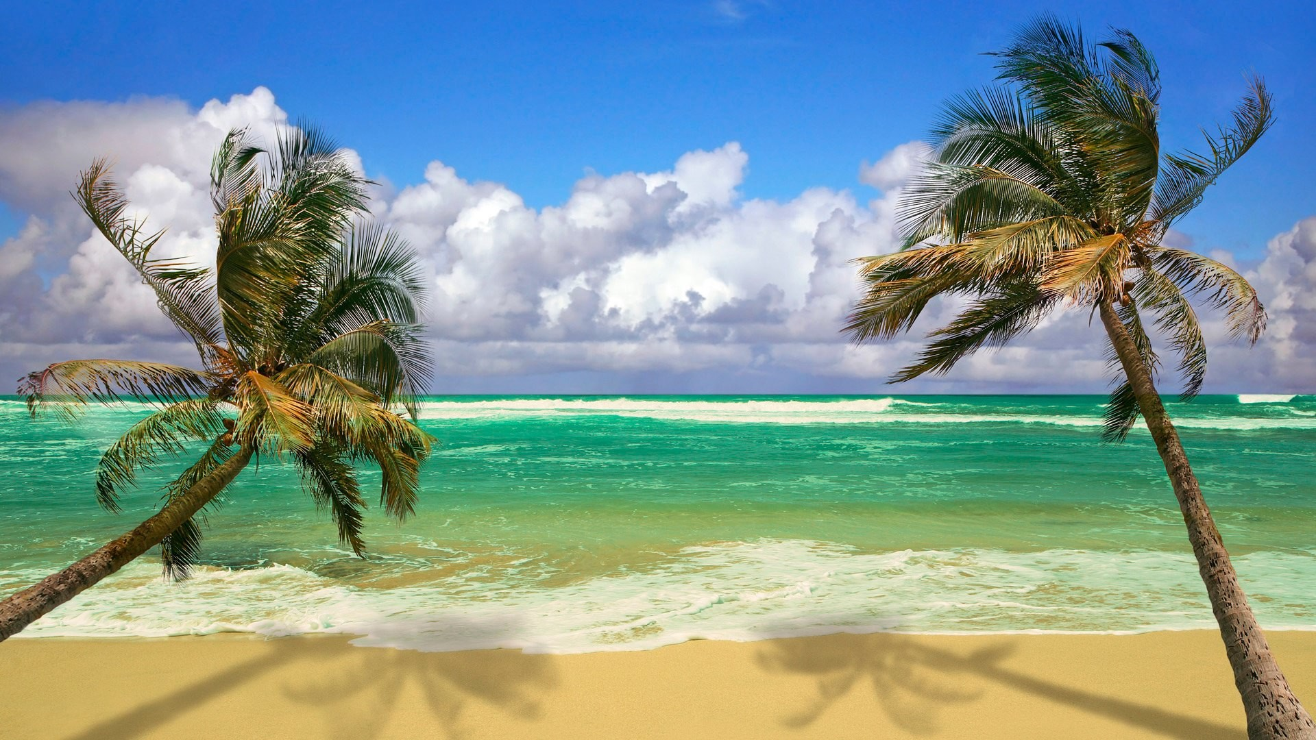 … scenes android; 25 ocean wallpapers beach backgrounds images  freecreatives …