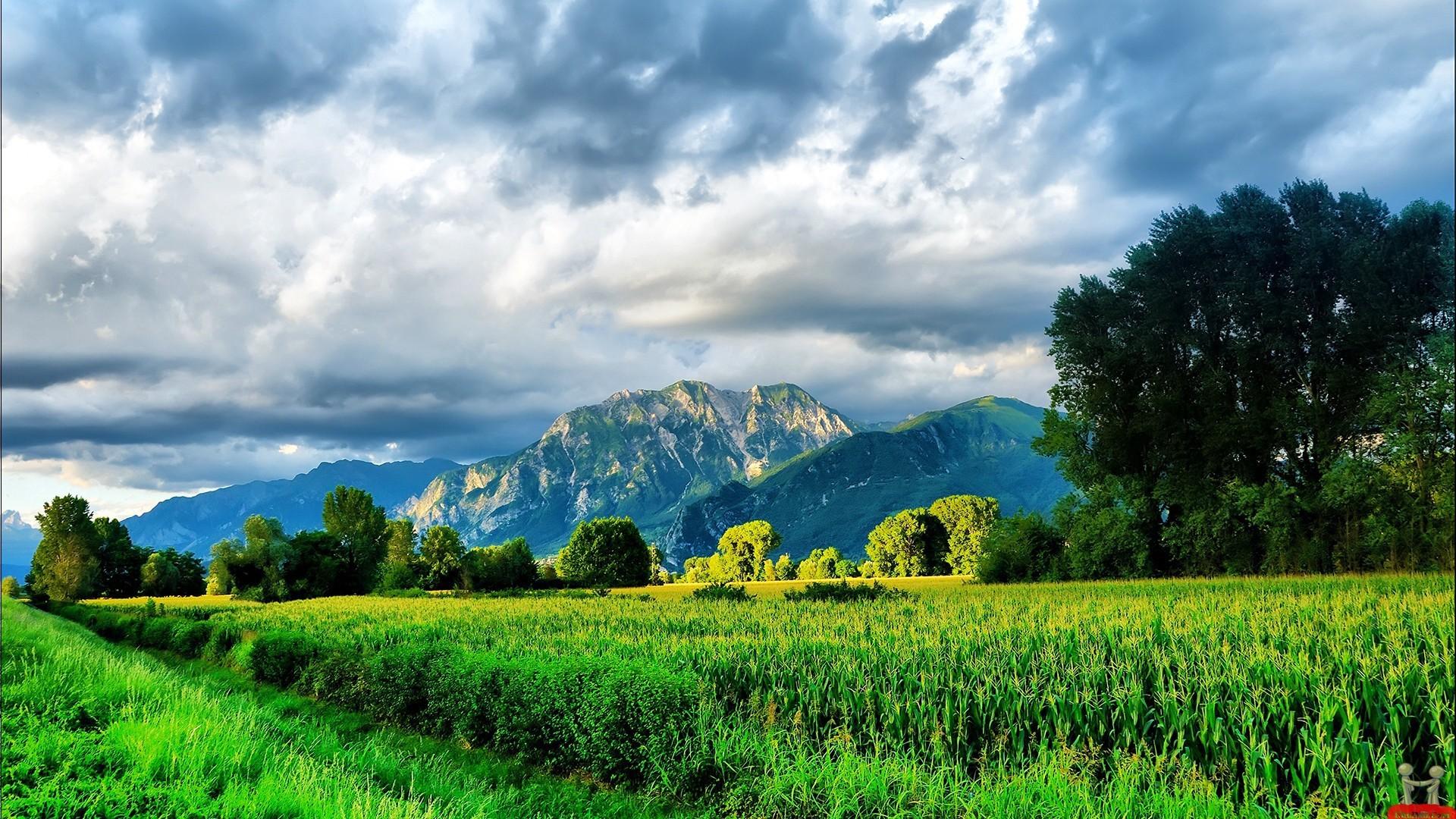 mountain scenes wallpaper   … mountain scenes beautiful mountain scenes  beautiful mountain scenes
