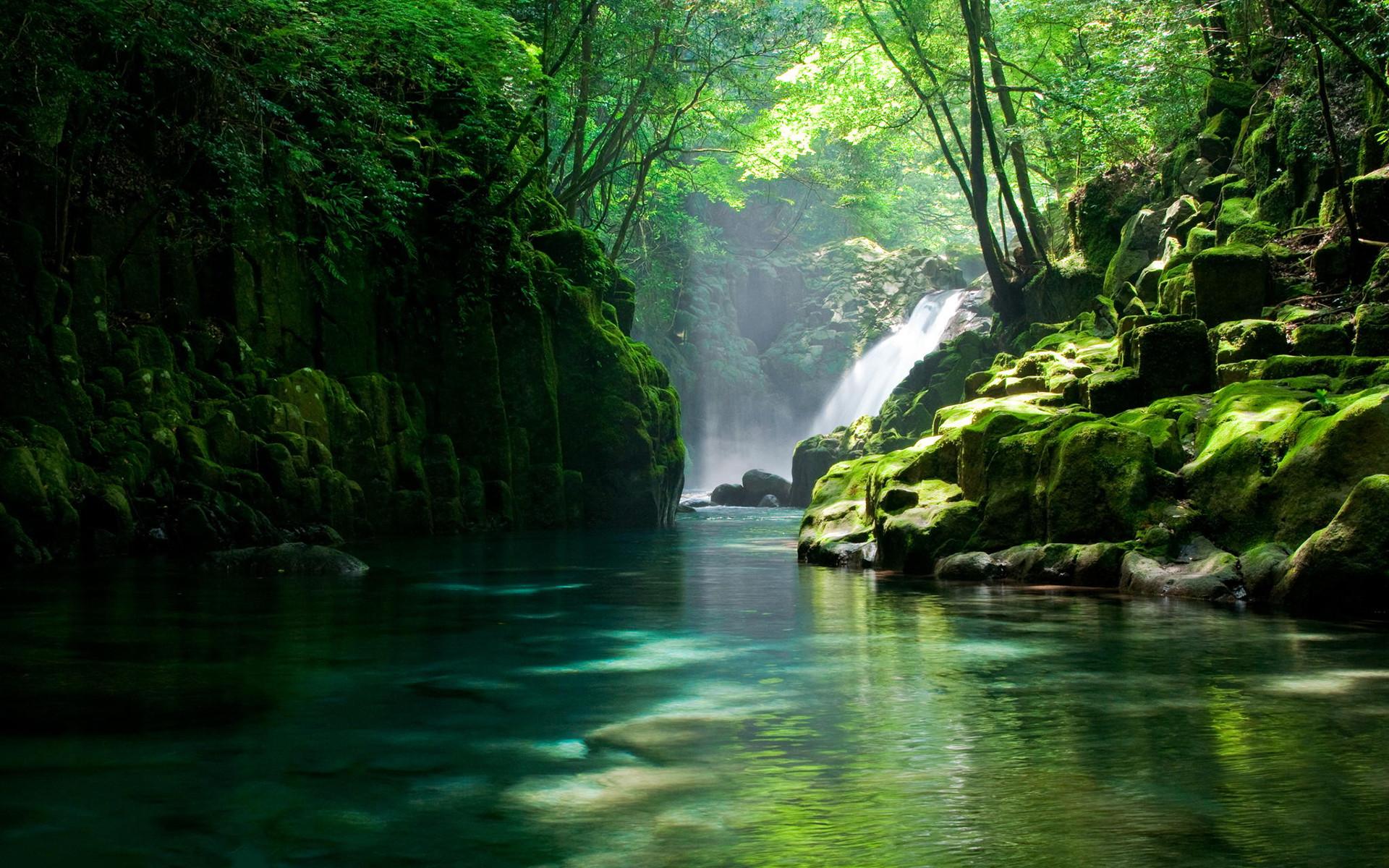 … Raise wallpaper of high-definition desktop of _ of wallpaper of scene  of mountain stream