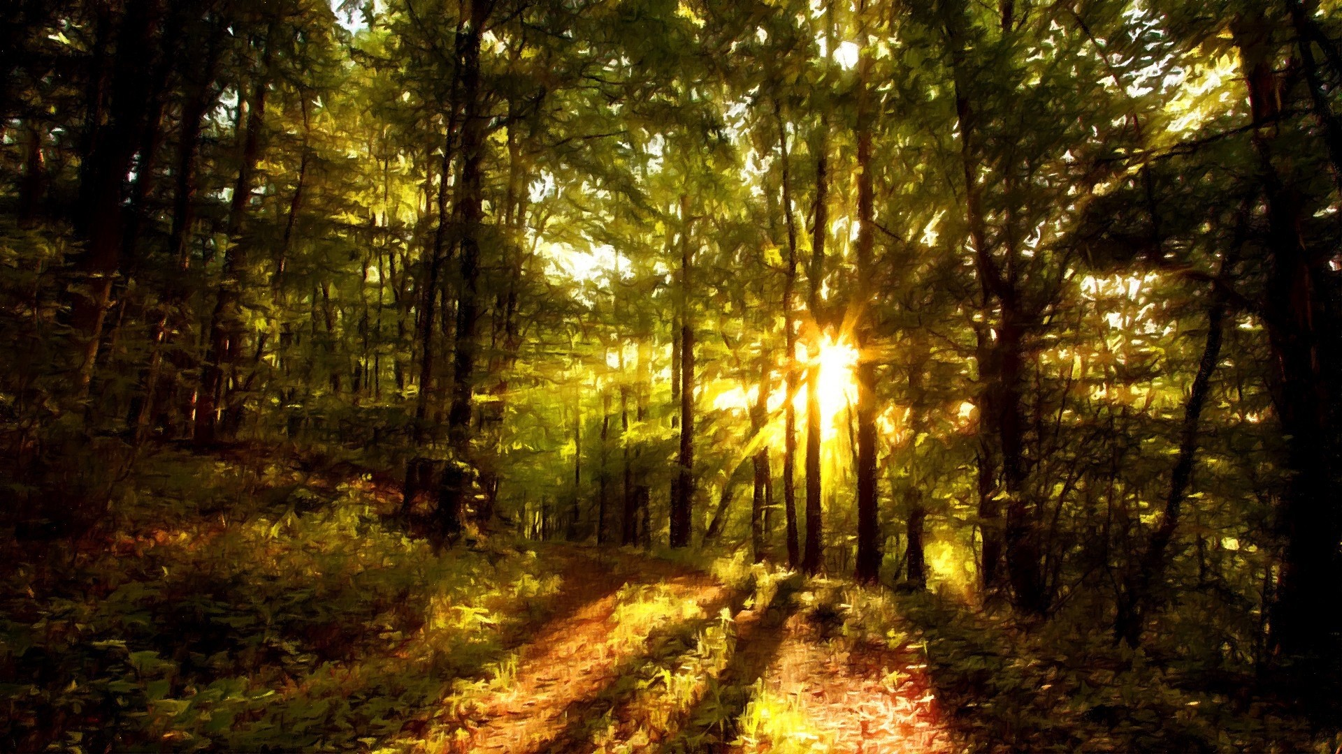 Beautiful Forest Paintings   Beautiful Forest Paintings HD Wallpaper (Full  HD – 1920×1080)