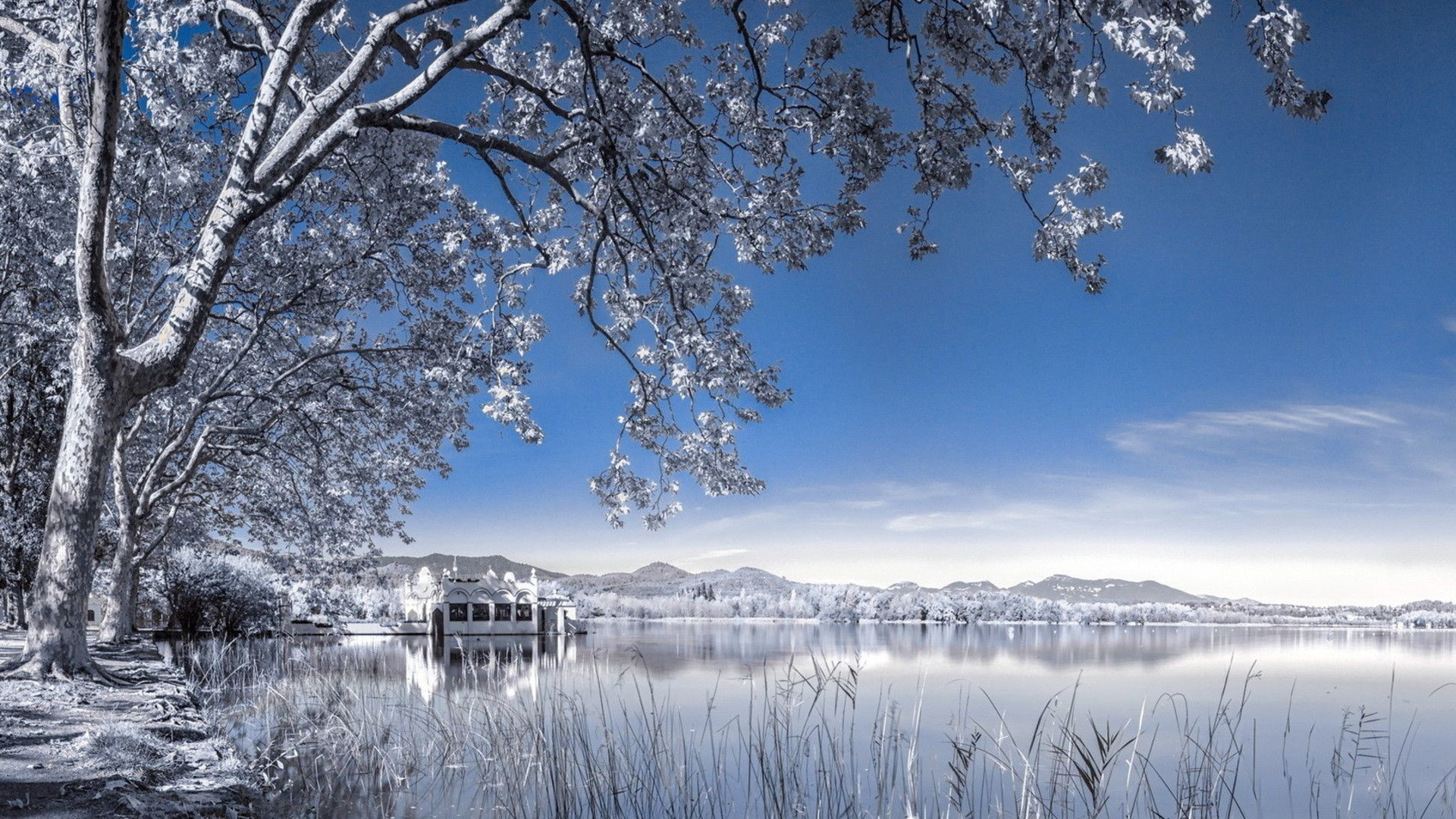 Winter Backgrounds Wallpapers 4