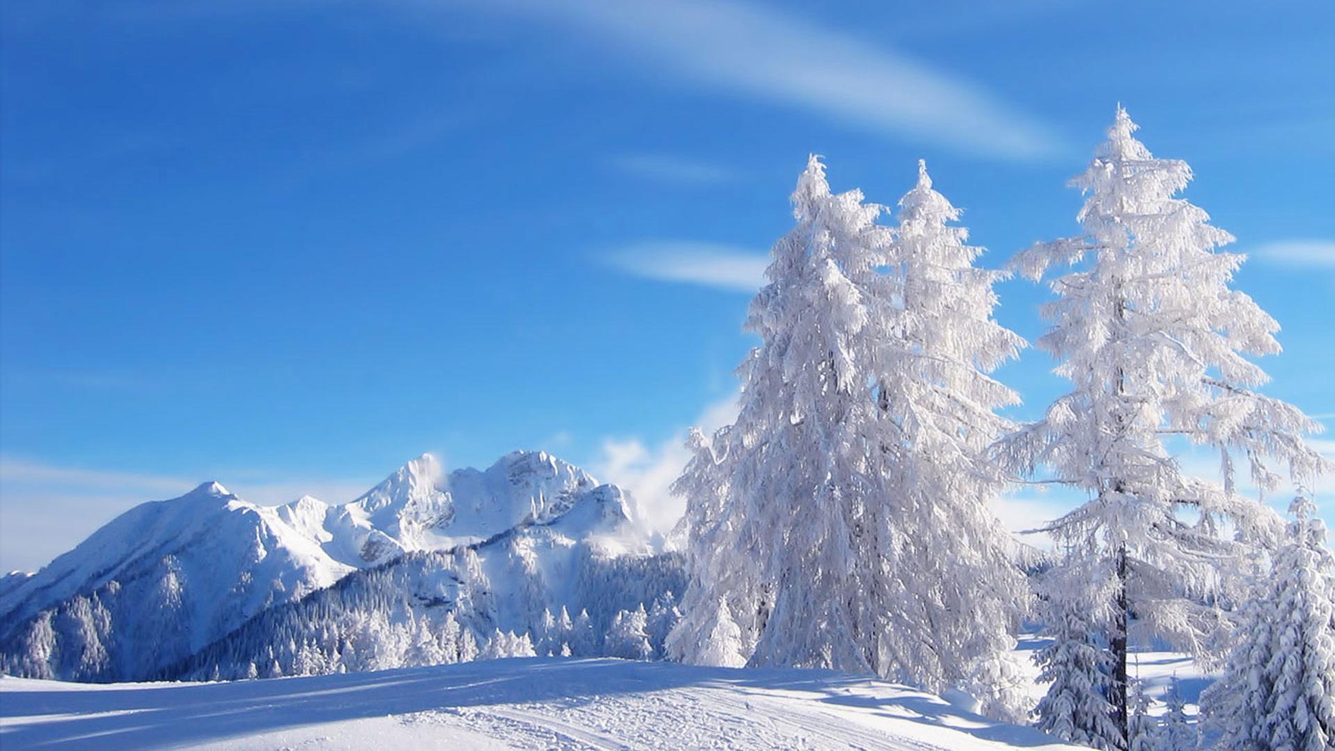 HD-Winter-Background-Wallpaper