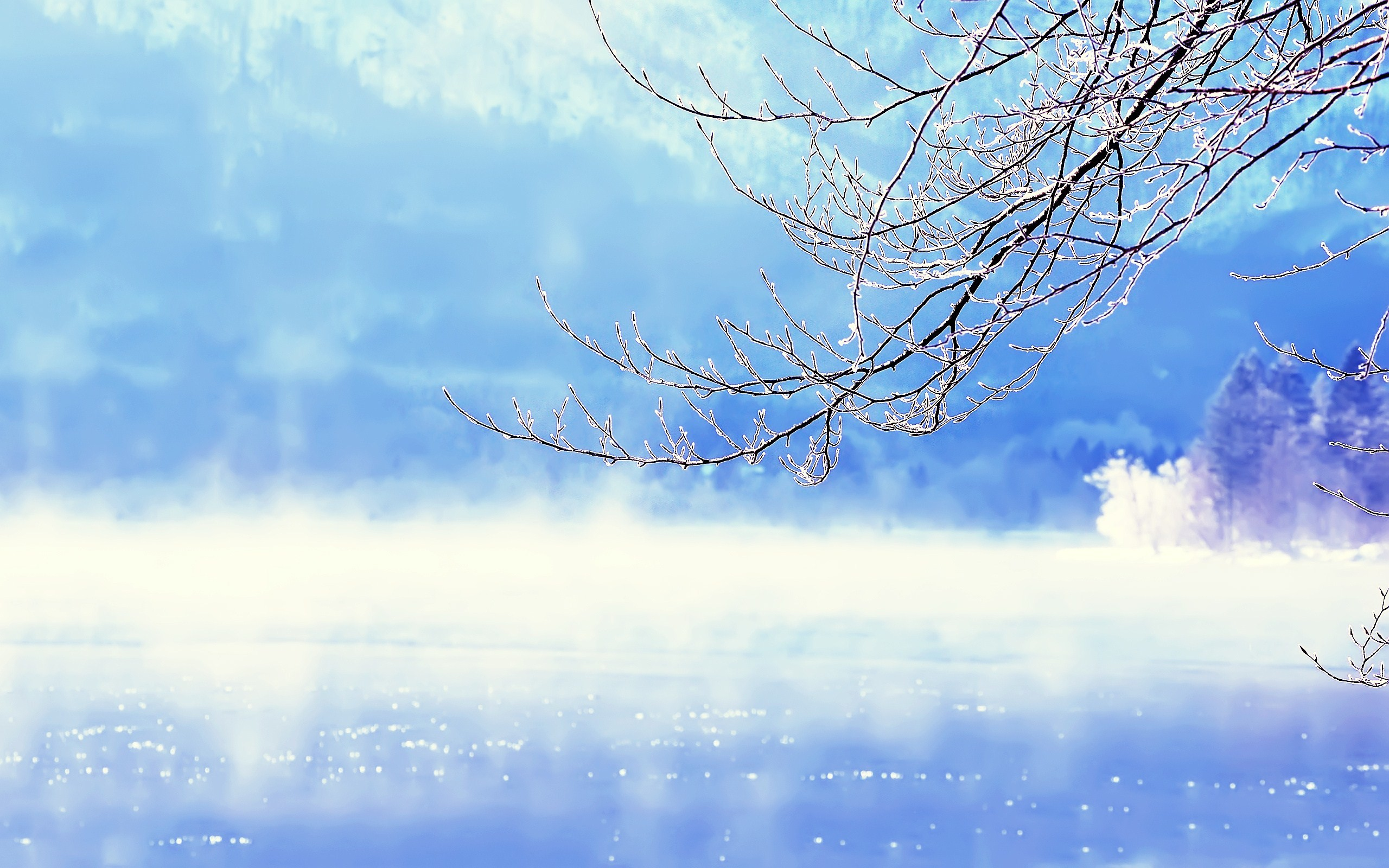 Beautiful Winter Background Wallpaper, High Definition, High Quality