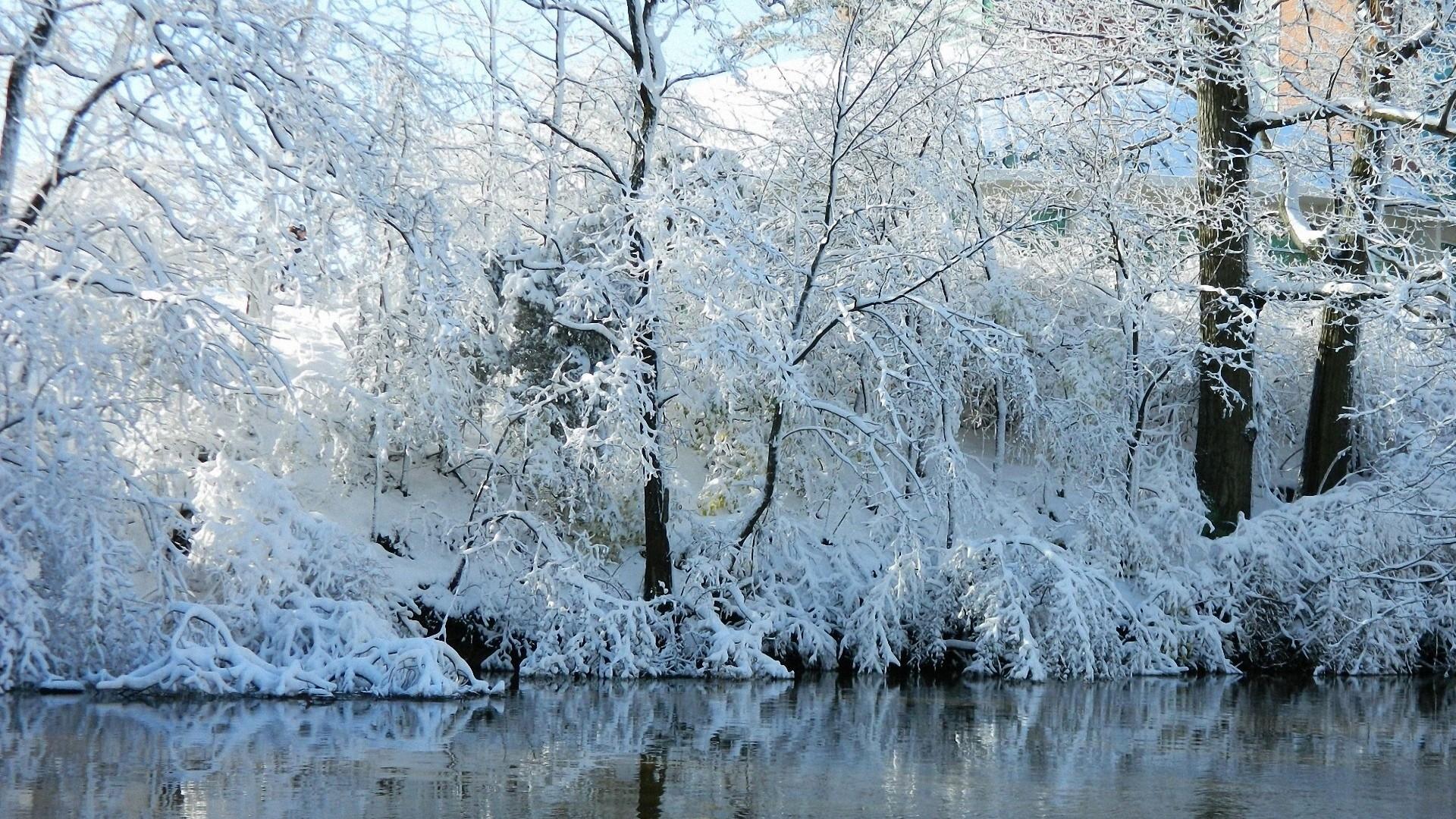 Wallpaper winter, river, coast, autumn, snow, hoarfrost