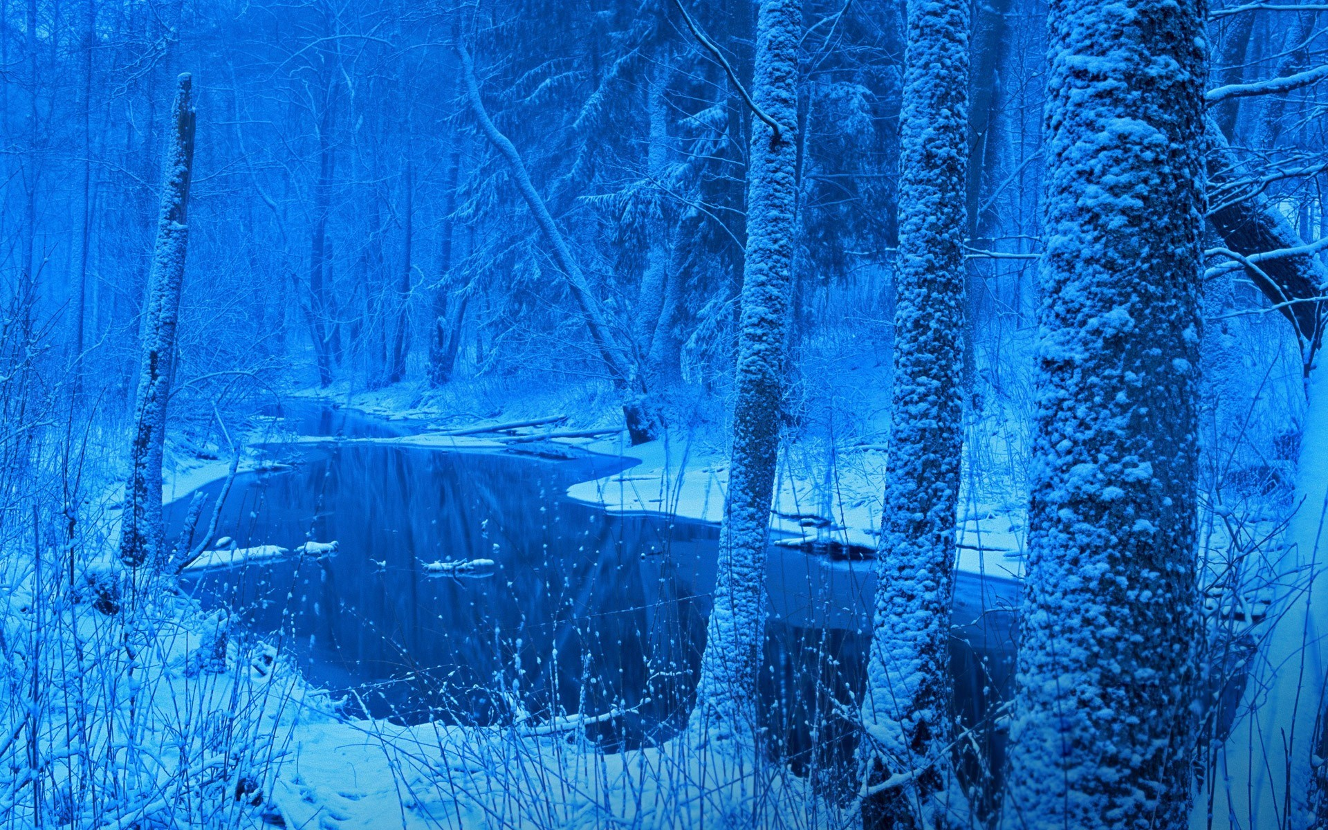 Free Awesome winter wallpaper – winter category