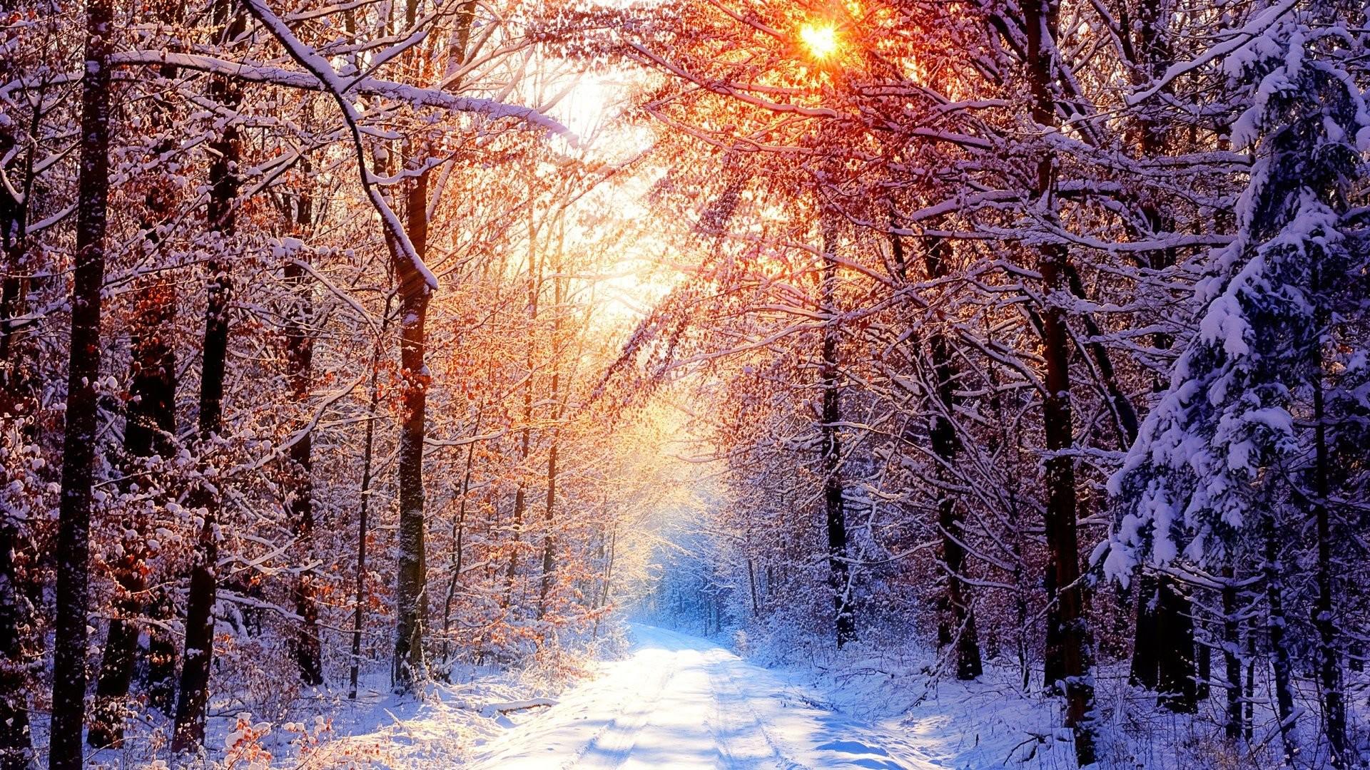 Beautiful Winter Wallpaper 722248