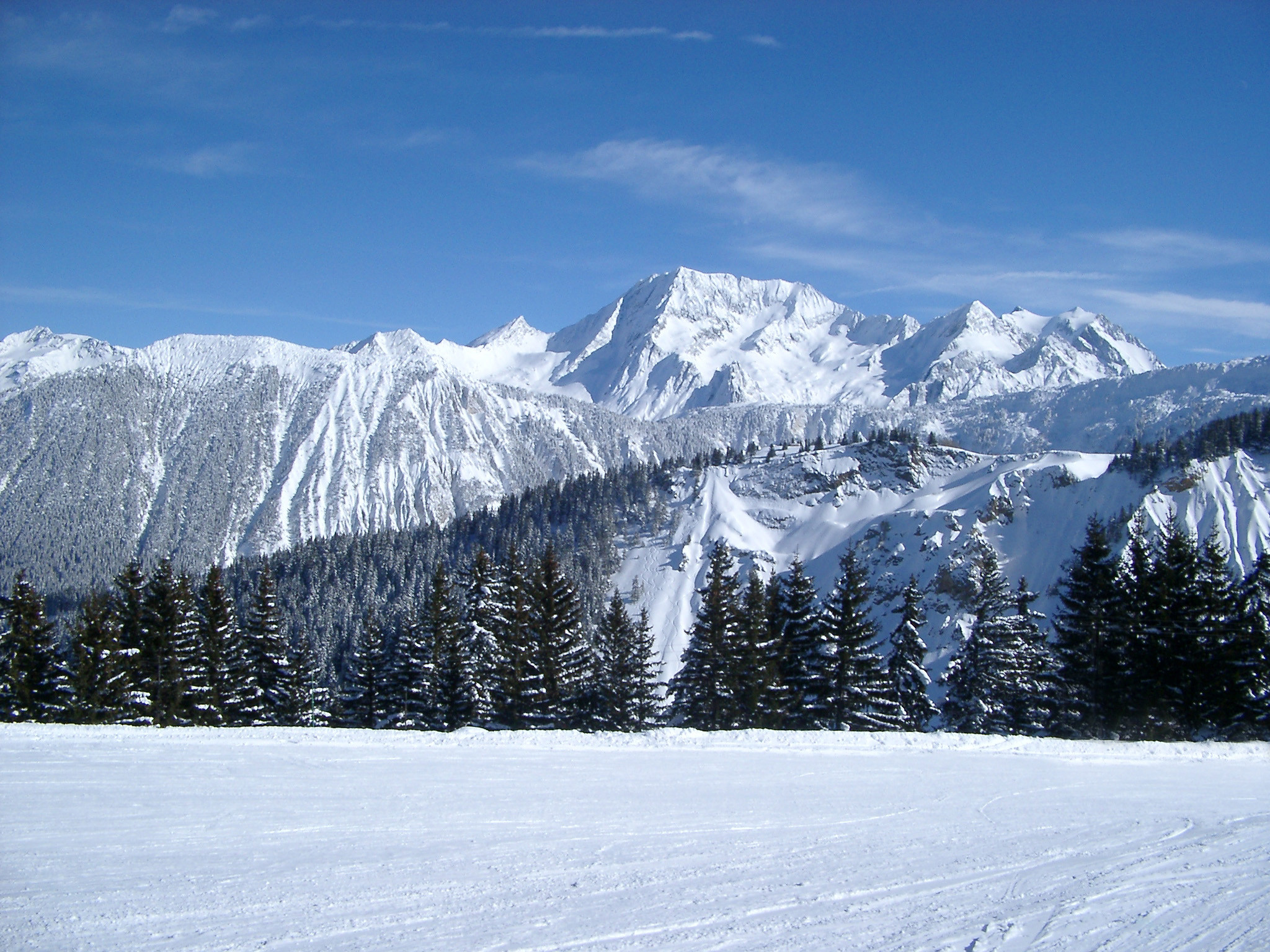 Mountains, Fir Trees and Wide Field Filled with Snow on Winter Holiday .