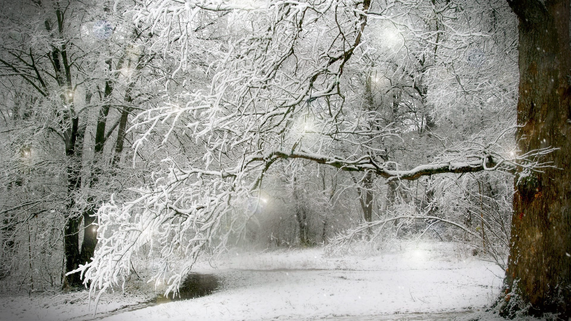 1920 x 1080 px winter snow scenes wallpaper: Full HD Pictures by Lawton  Kingsman