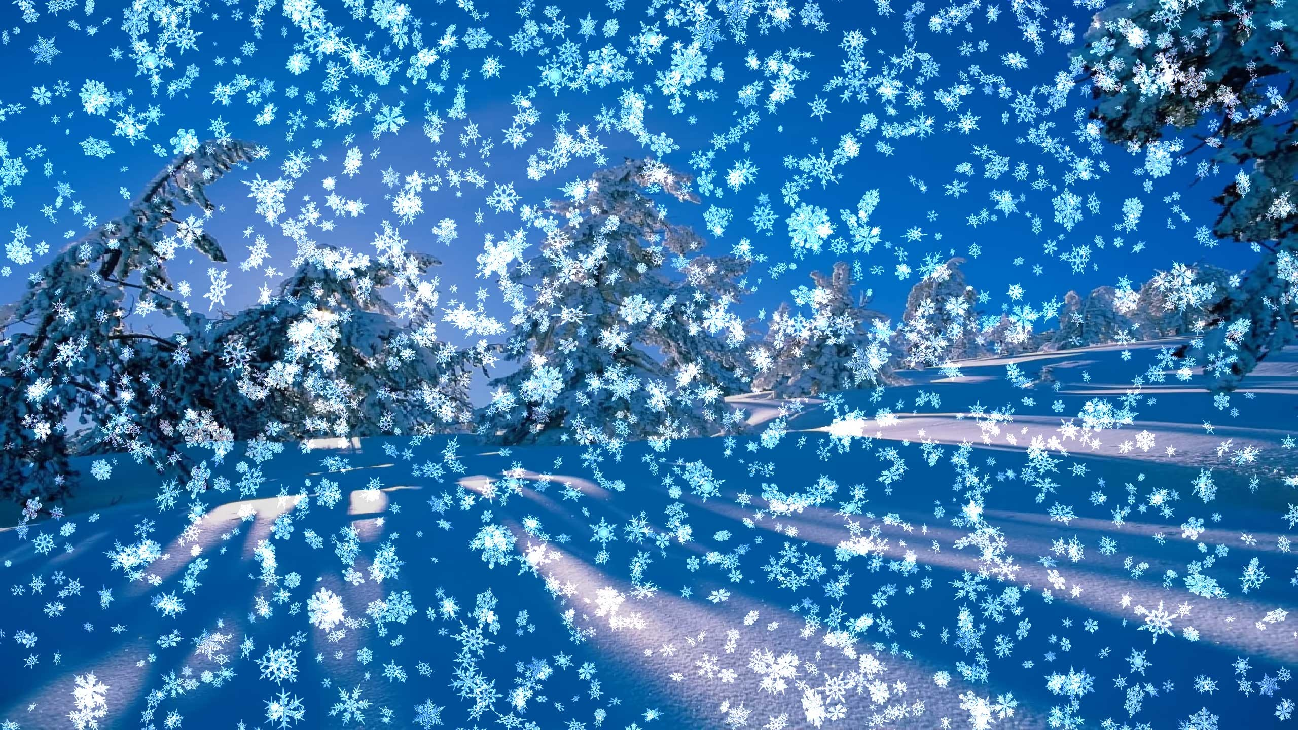 Snowy Desktop is perfect to get you in the mood for the winter holidays. A  beautiful snow scene with falling snow on your desktop, blue sky, trees  covered …
