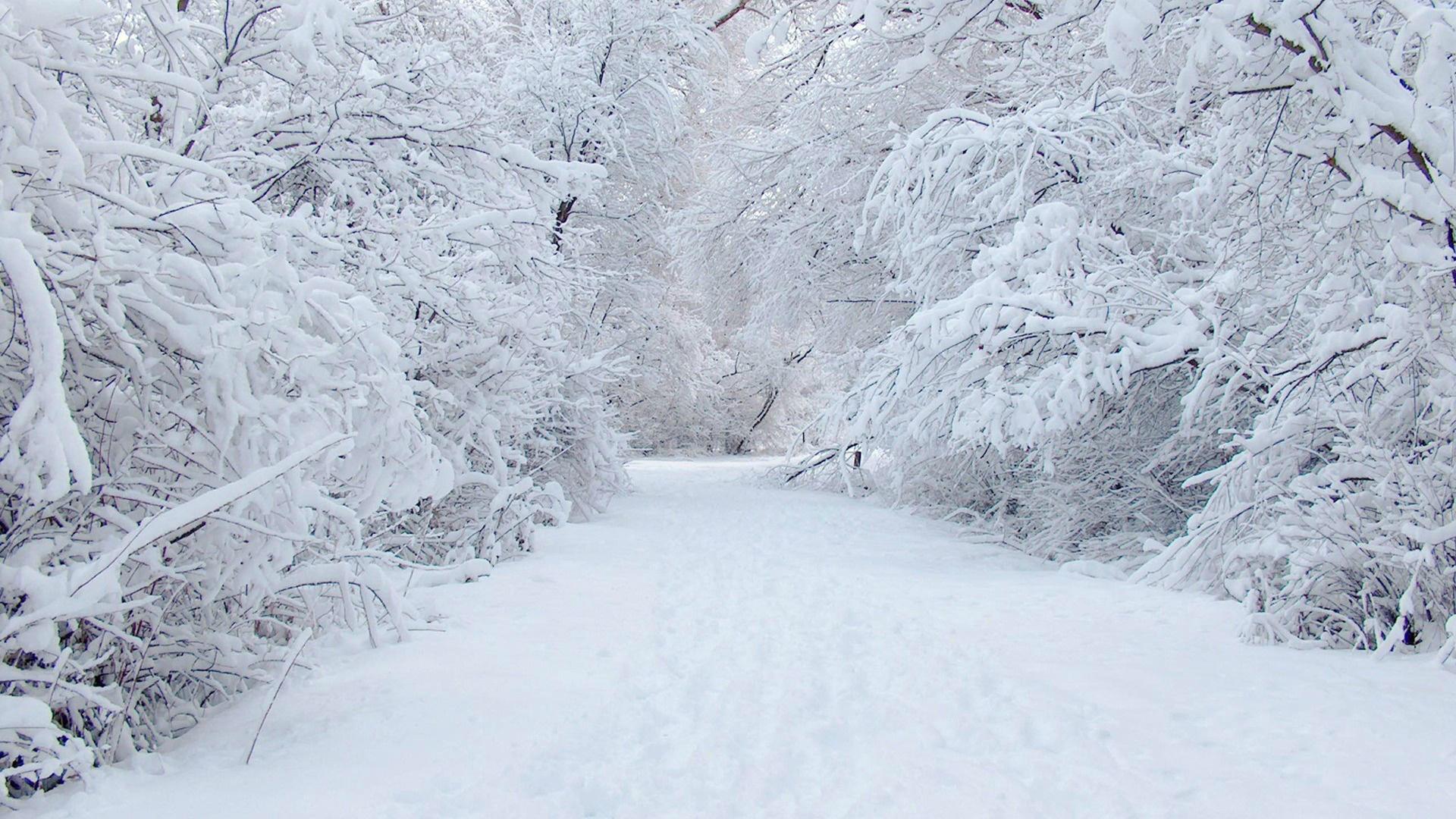 File Name: #813293 Ξ Free Snow Wallpapers