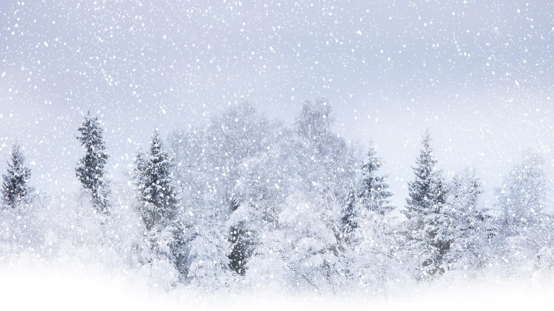 Snow Background 17158 Px ~ HDWallSource #3938