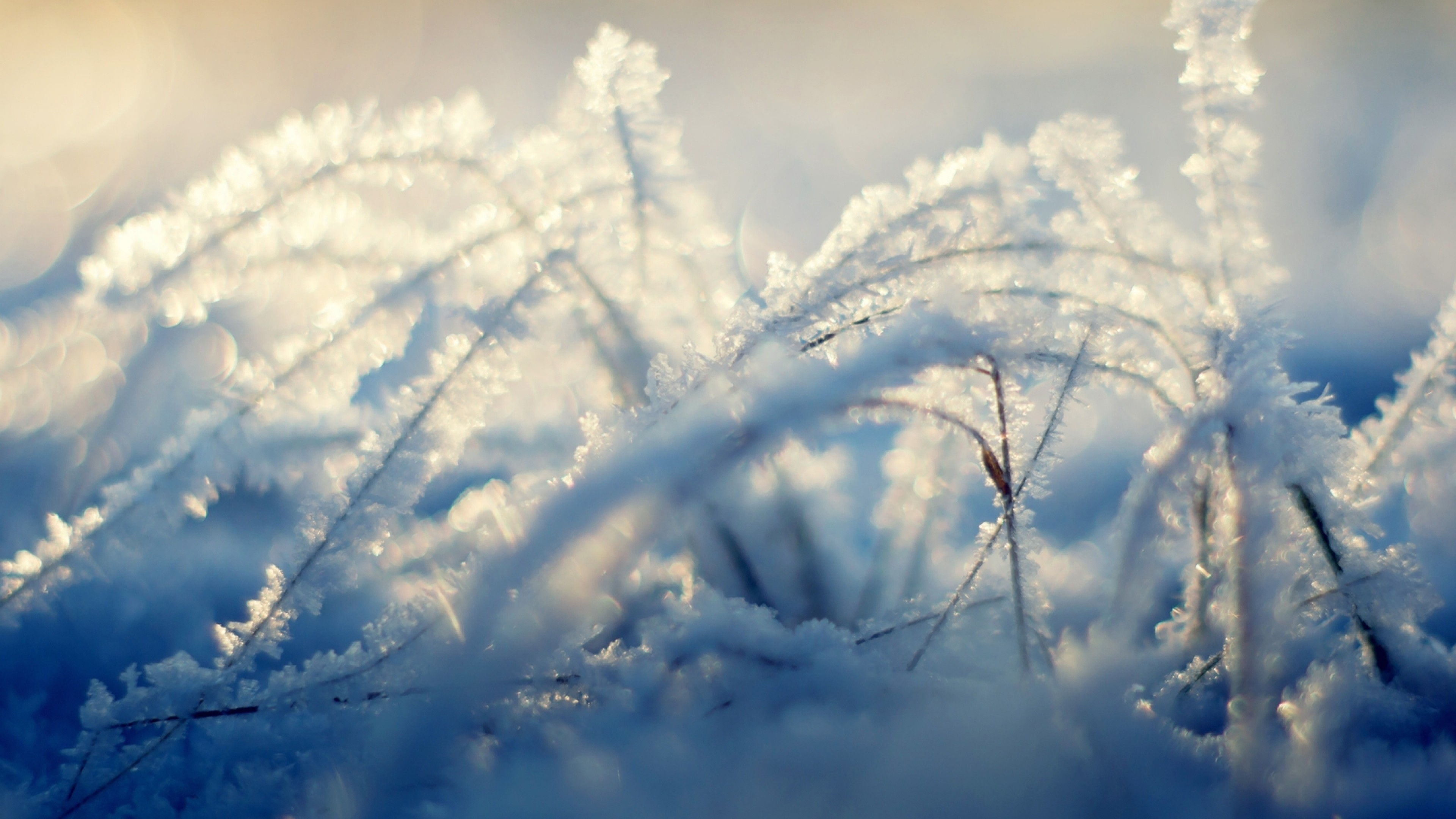 Preview wallpaper snow, background, shine, winter, grass 3840×2160