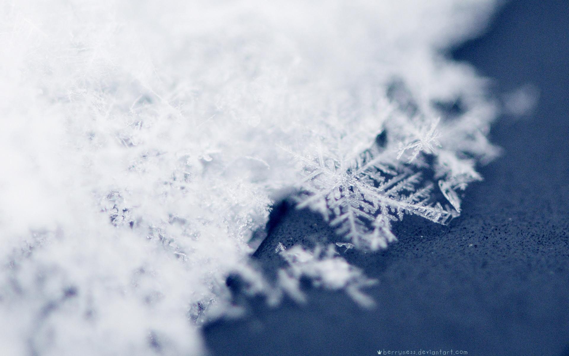 Snow Snowflakes Wallpaper Snow, Snowflakes #3971