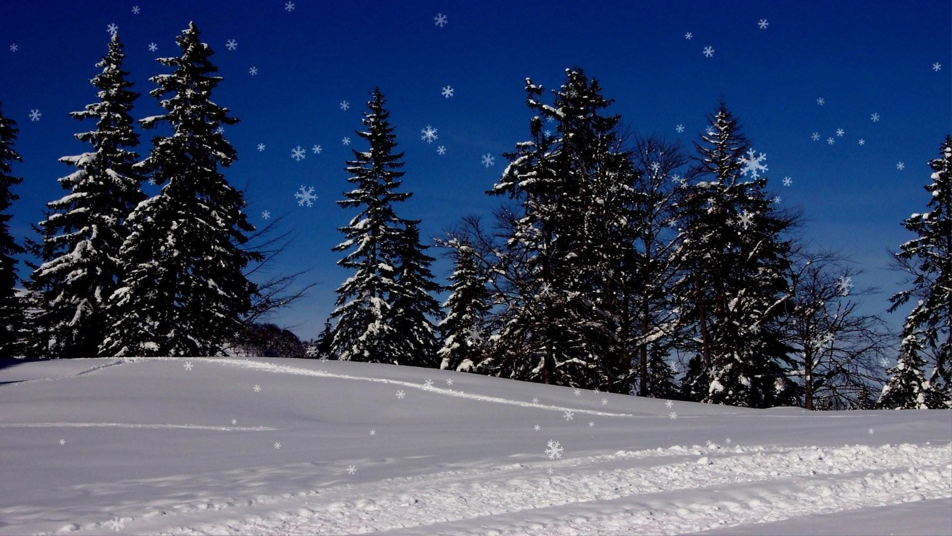 Animated Snow Background