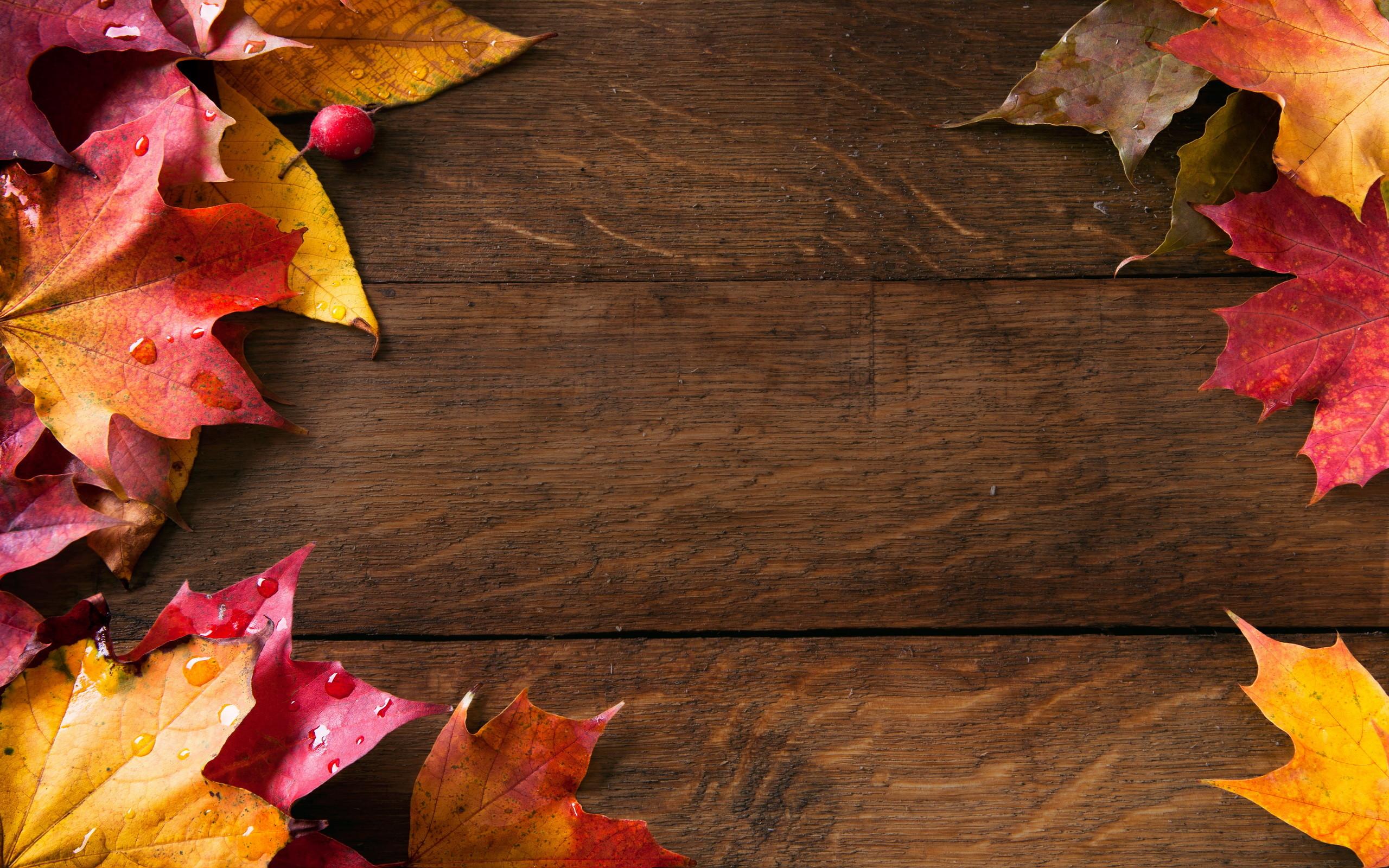 Best 25+ Autumn desktop wallpaper ideas on Pinterest | Fall wallpaper,  Wallpapers for desktop and Fall desktop backgrounds