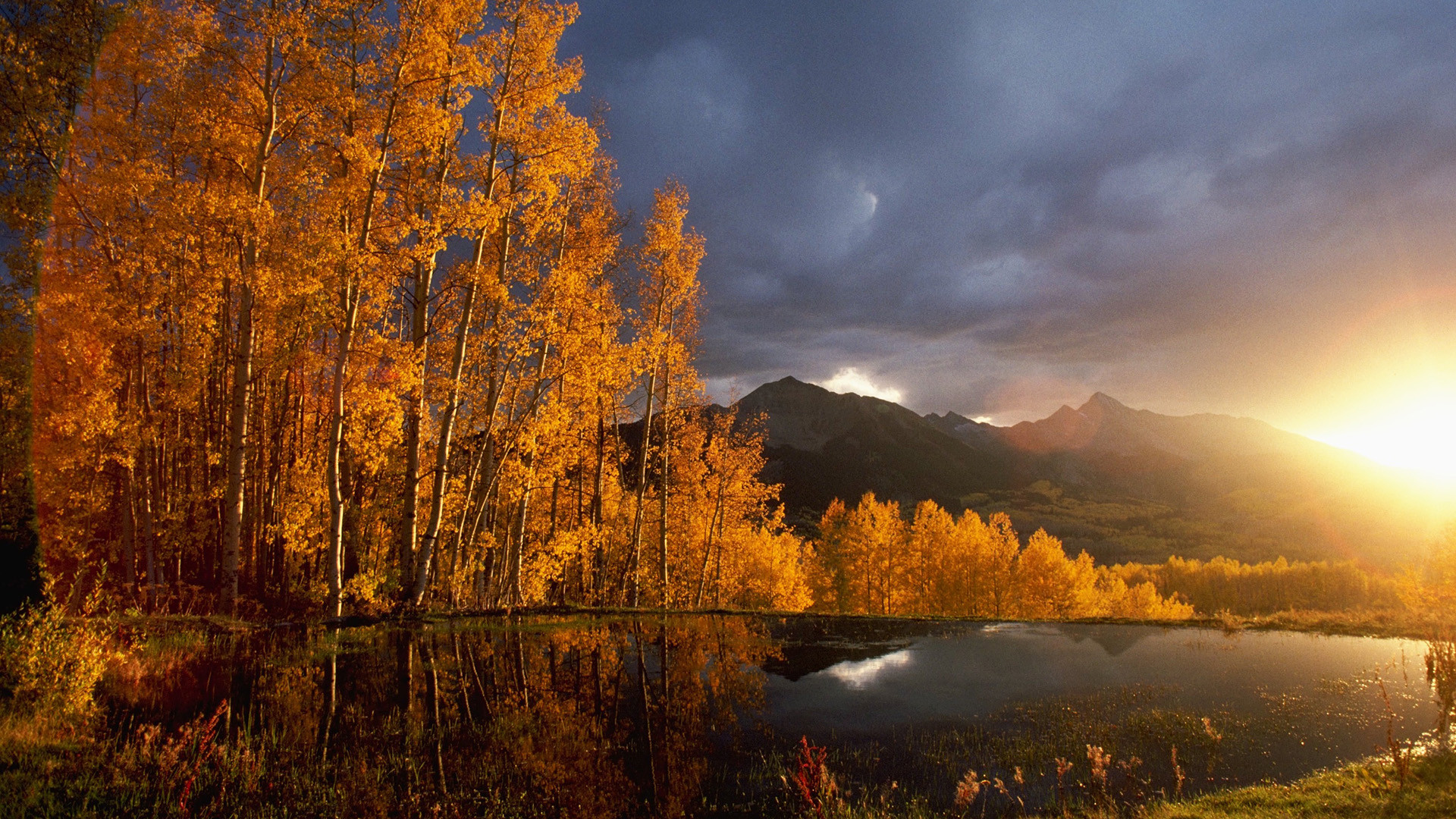 PHOTOGRAPHY Best Autumn Wallpapers for Your Desktop Free ART