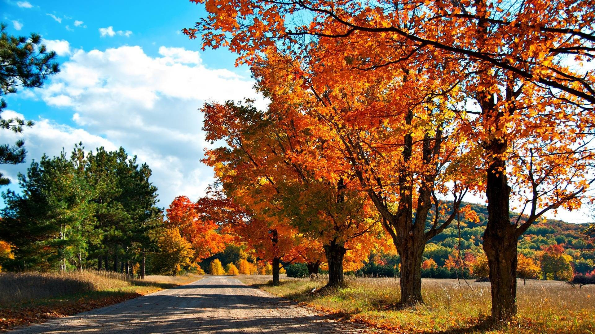 Wallpapers For > Autumn Wallpaper 1920×1080