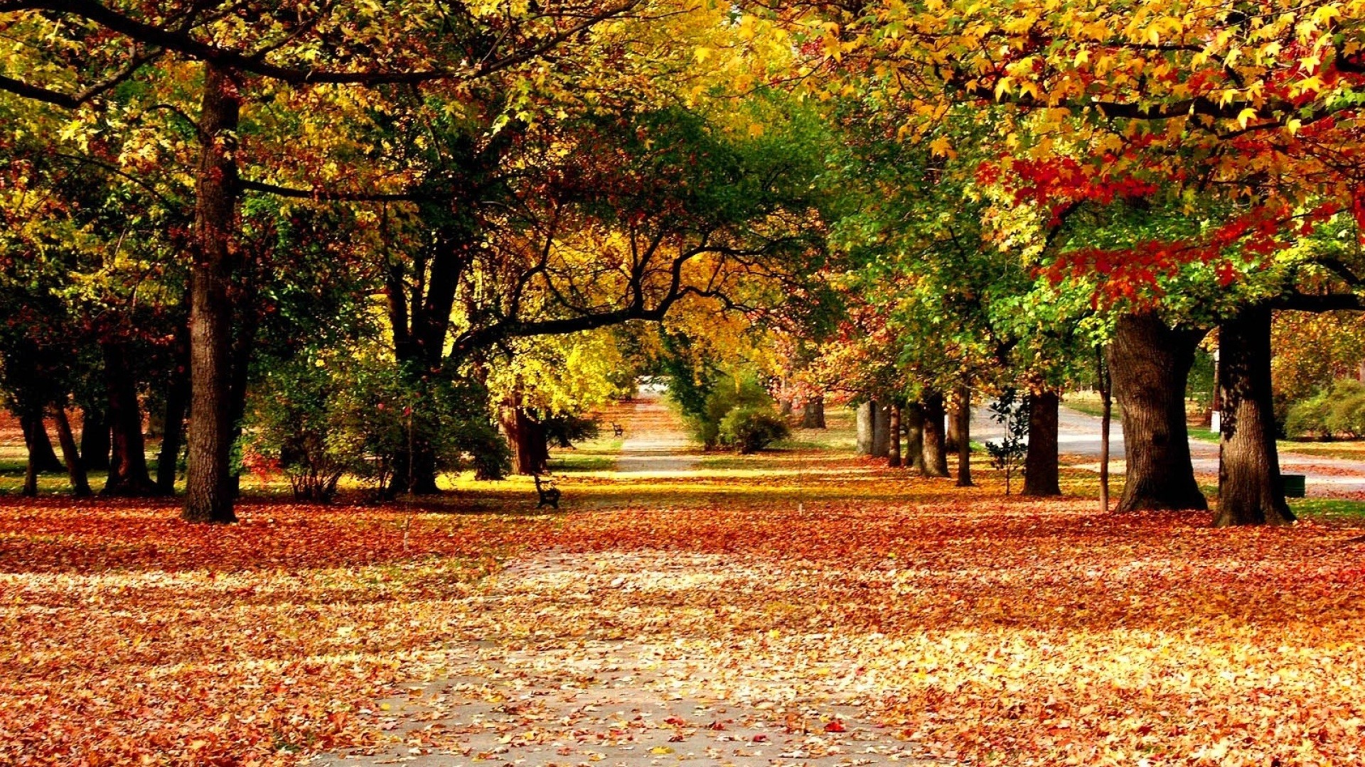 Hd Fall Nature Wallpapers
