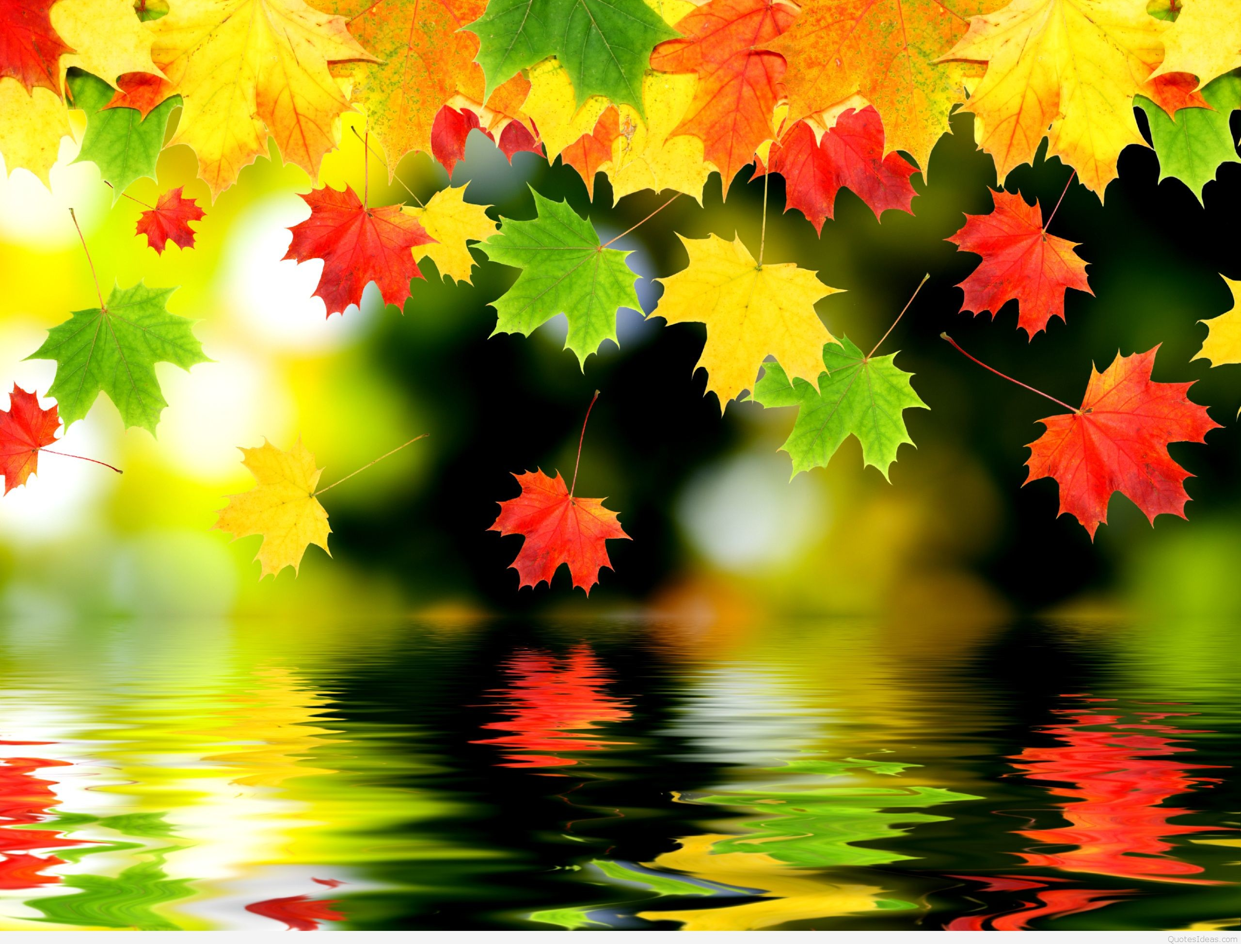 Autumn Wallpapers HD Desktop Backgrounds Images and Pictures