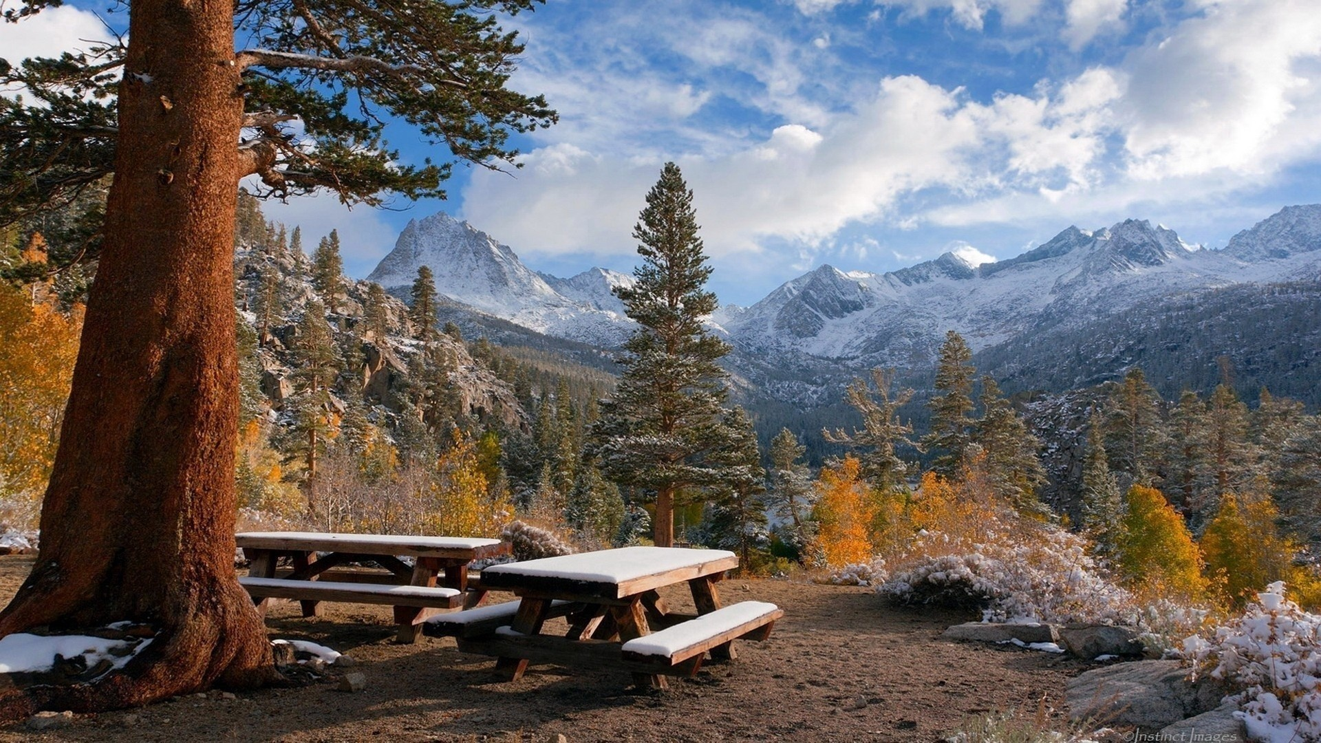 Trees Fall Autumn Bench Wallpapers Of Nature Hd Detail