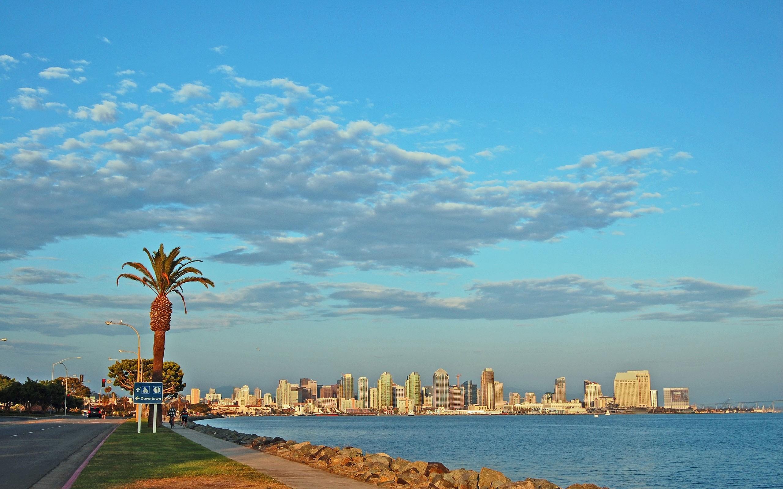 Wallpaper San – diego, Skyscrapers, Beach, Palm trees, California, Usa