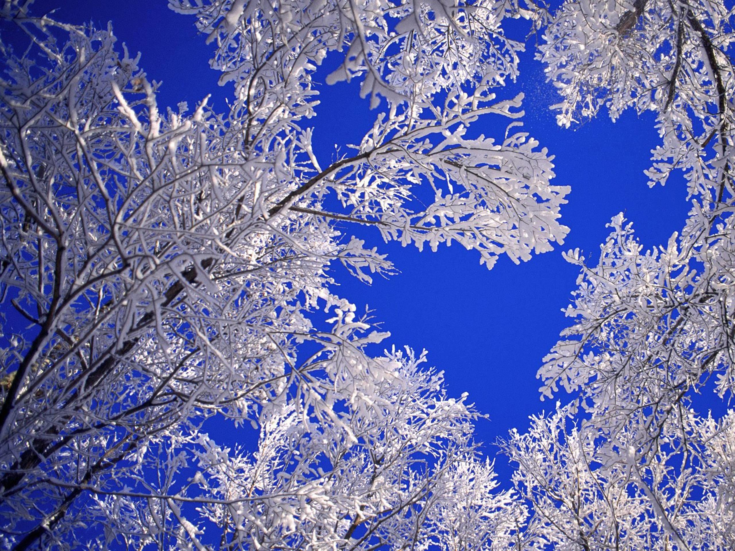 desktop wallpaper winter scenes – www.