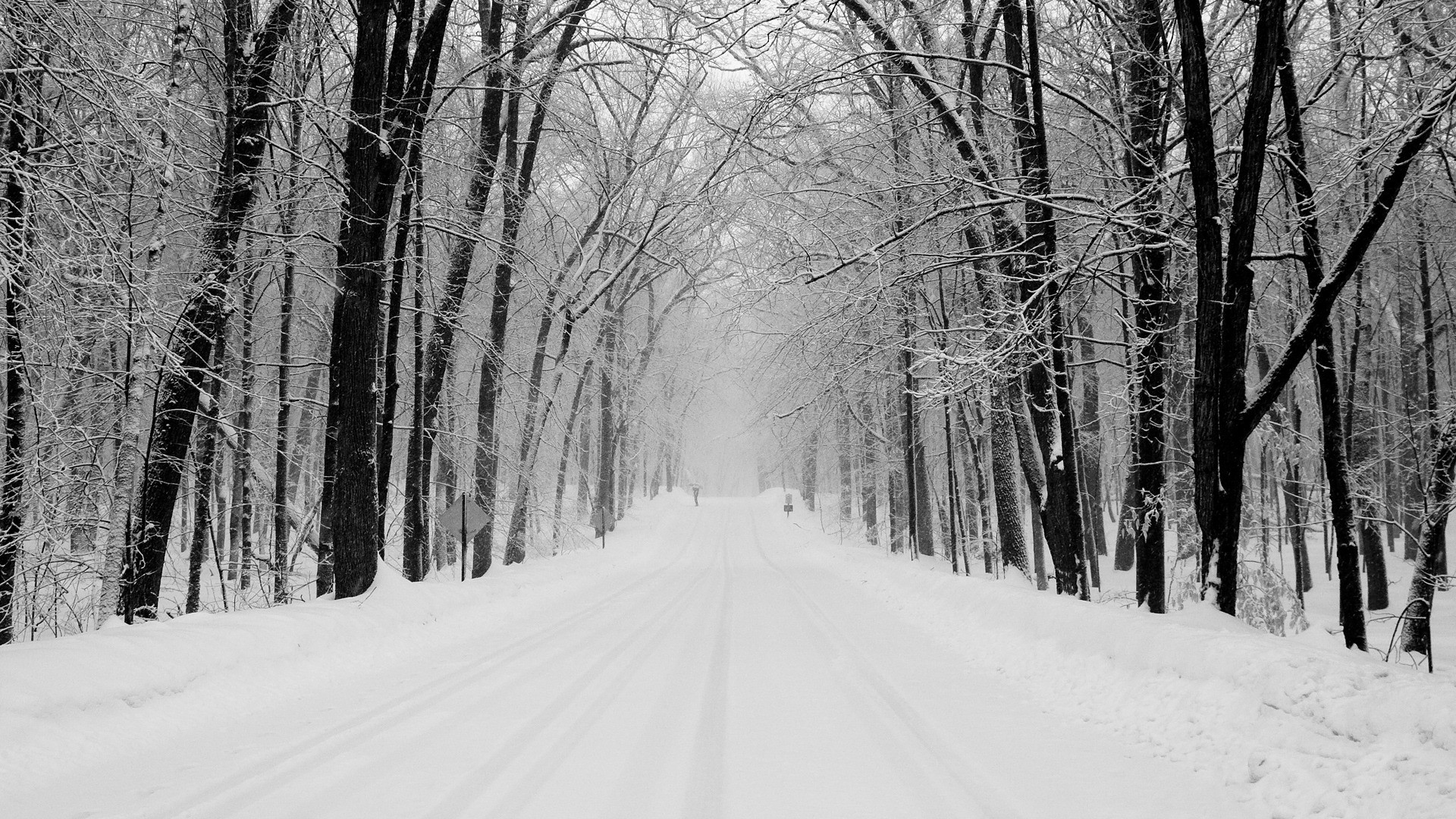 Explore Forest Wallpaper, Nature Wallpaper, and more! Snowy Road