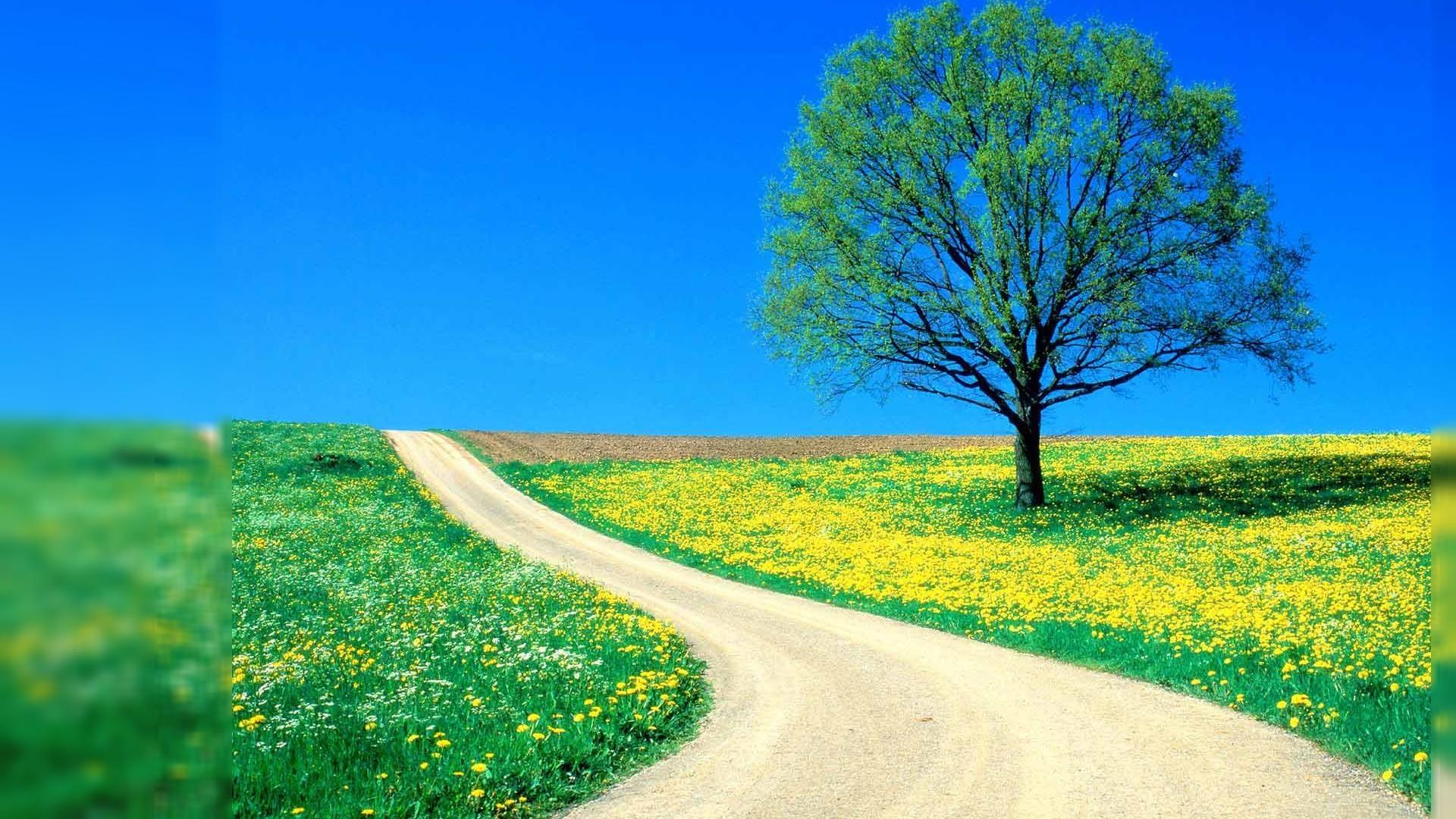 Nature Wallpapers Desktop Download HD #5765 Wallpaper | ESWALLS.